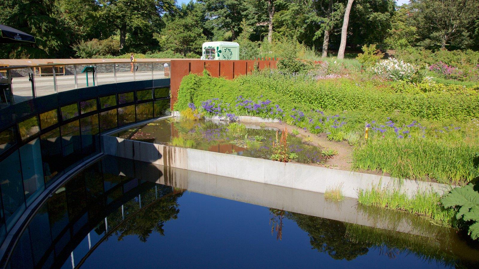 Real Jardín Botánico mostrando un estanque y un jardín