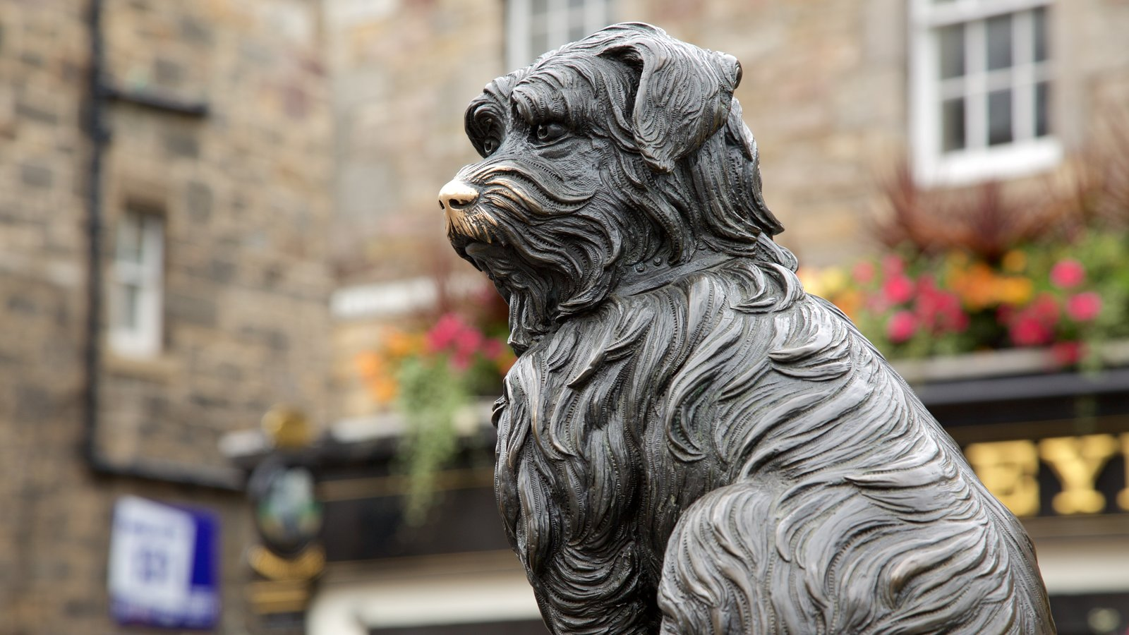 Greyfriar\'s Bobby featuring outdoor art