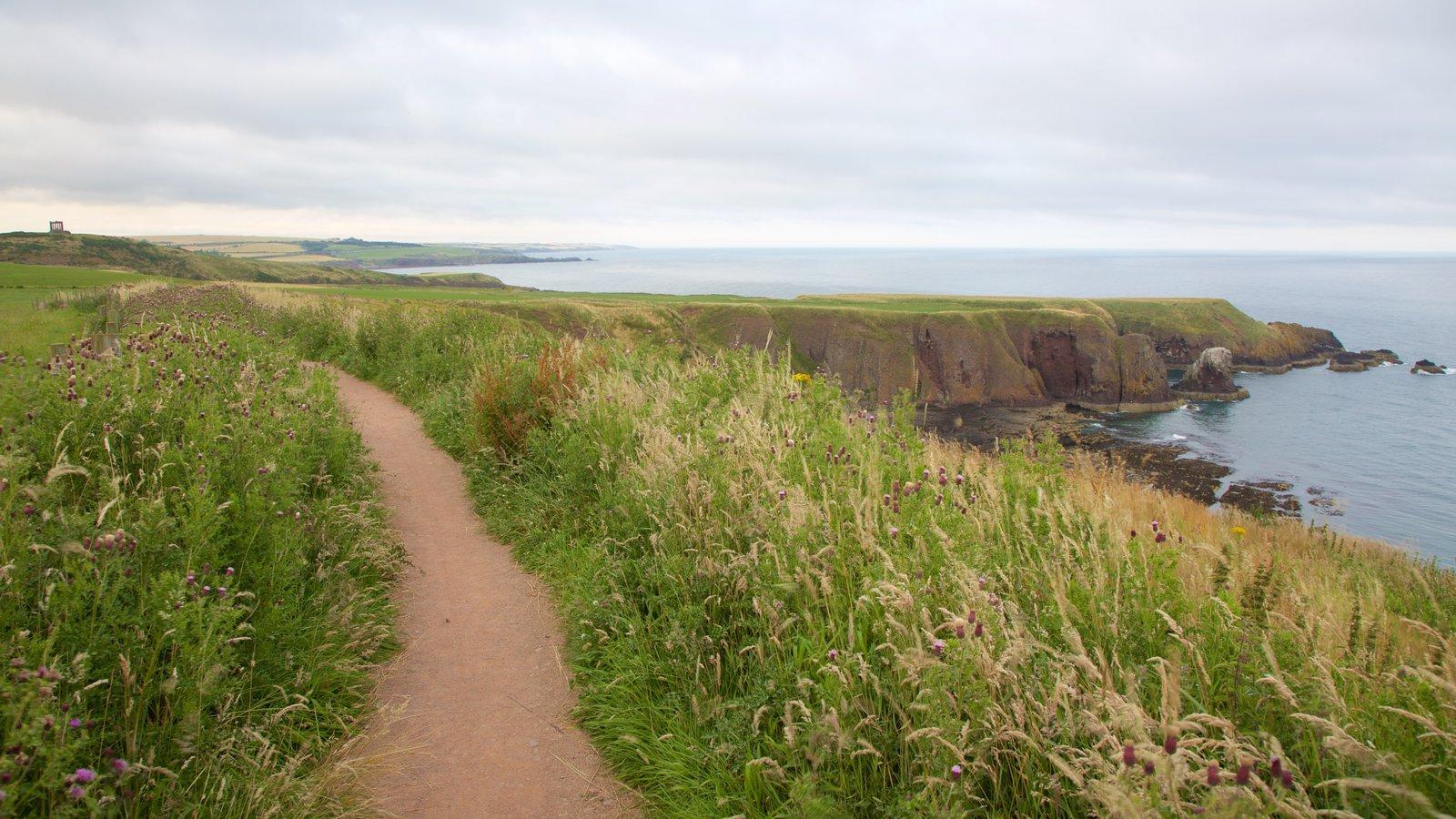 Dunnottar Castle featuring hiking or walking, general coastal views and farmland