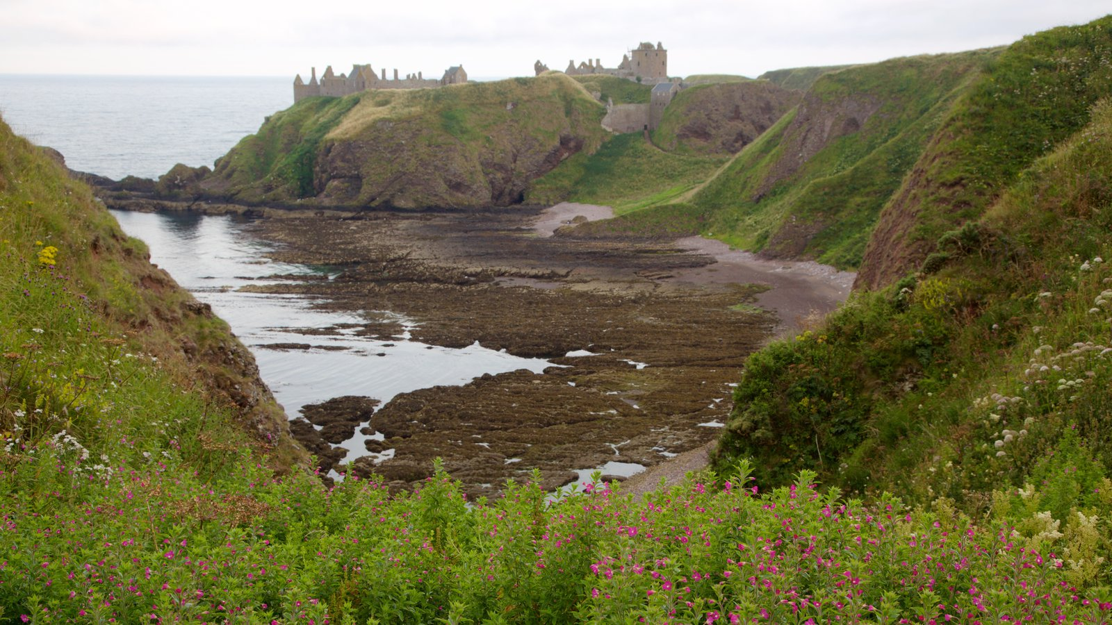 Dunnottar Castle featuring farmland and general coastal views