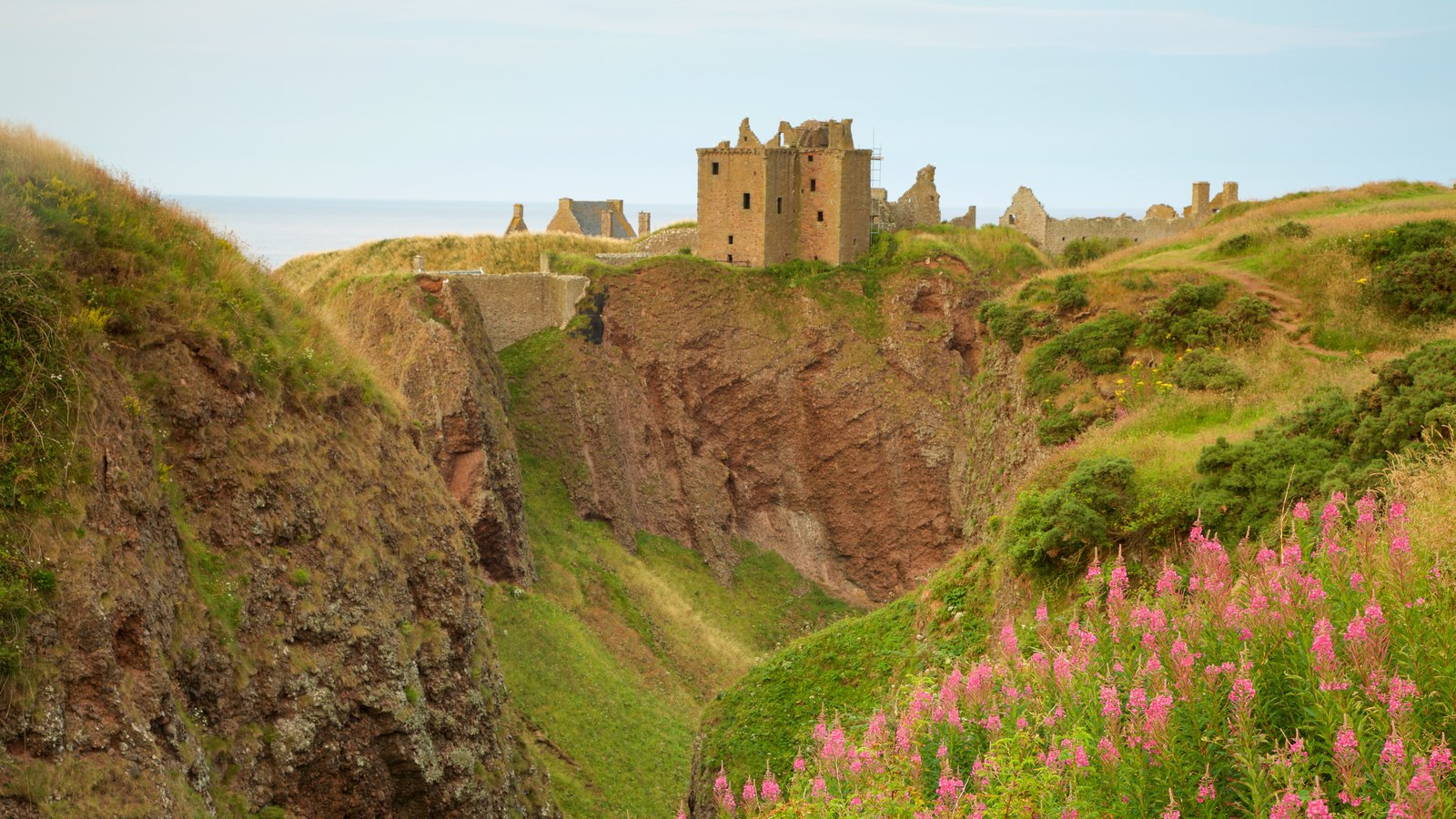 Dunnottar Castle ofreciendo tierras de cultivo y un barranco o cañón