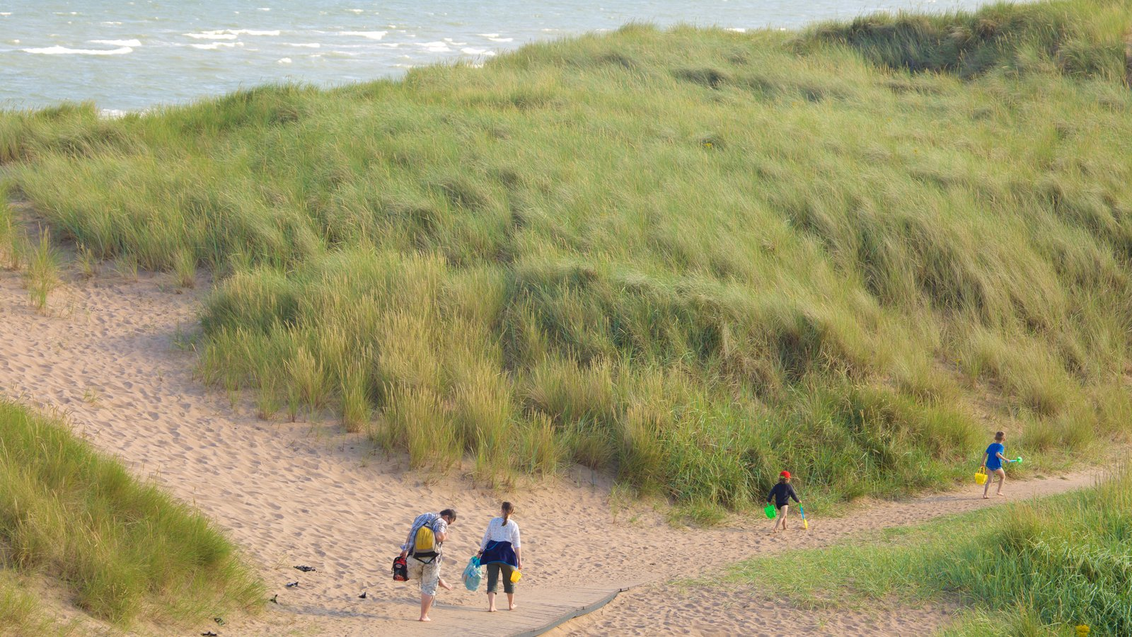 Balmedie Country Park featuring a beach as well as a family
