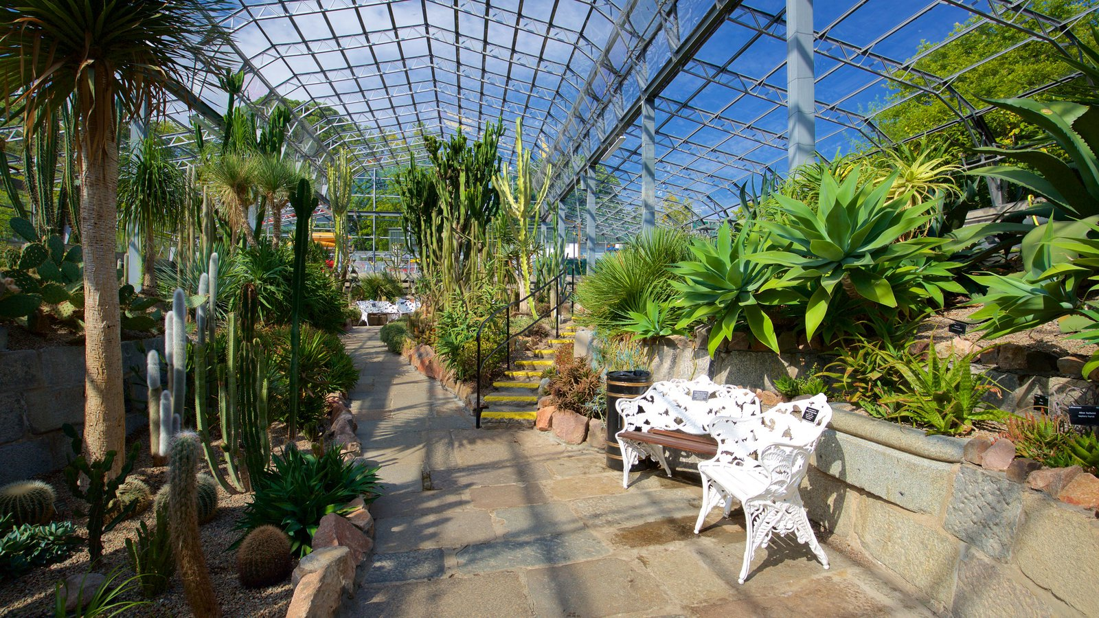 Duthie Park Winter Gardens which includes interior views and a garden