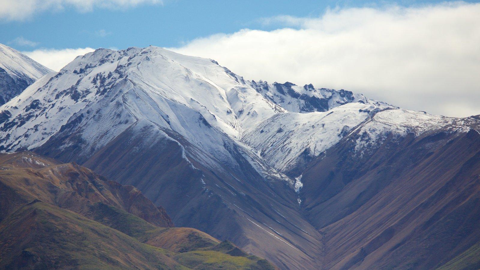 Parque Nacional de Denali ofreciendo nieve y montañas