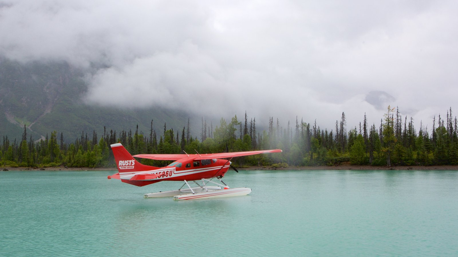 Lake Clark National Park and Preserve which includes forests and a lake or waterhole