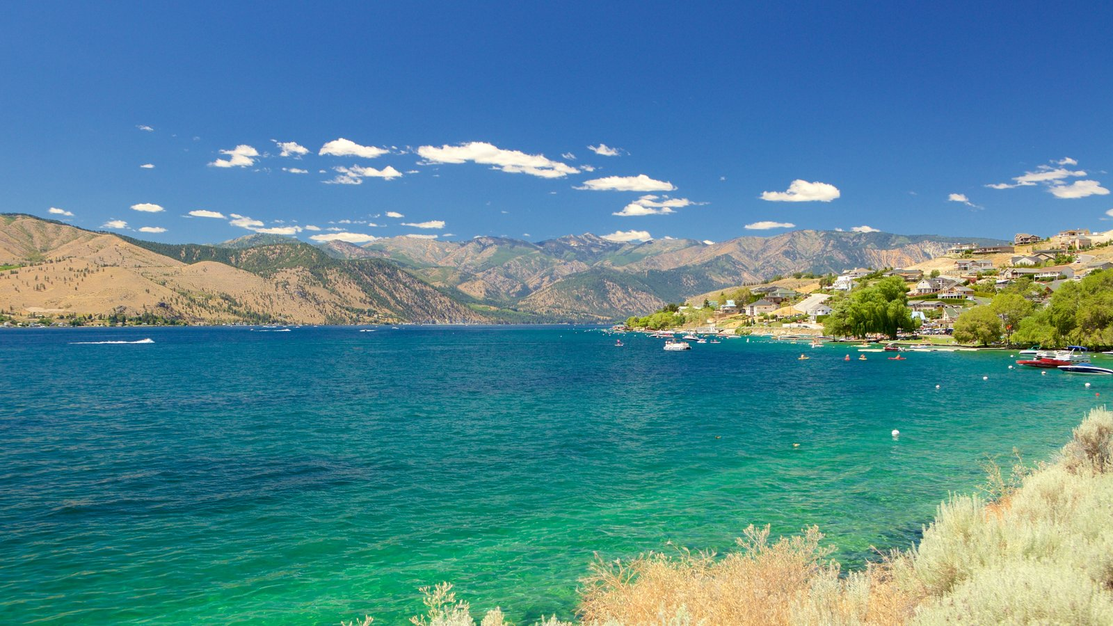 Lake Chelan mostrando paisagens litorâneas