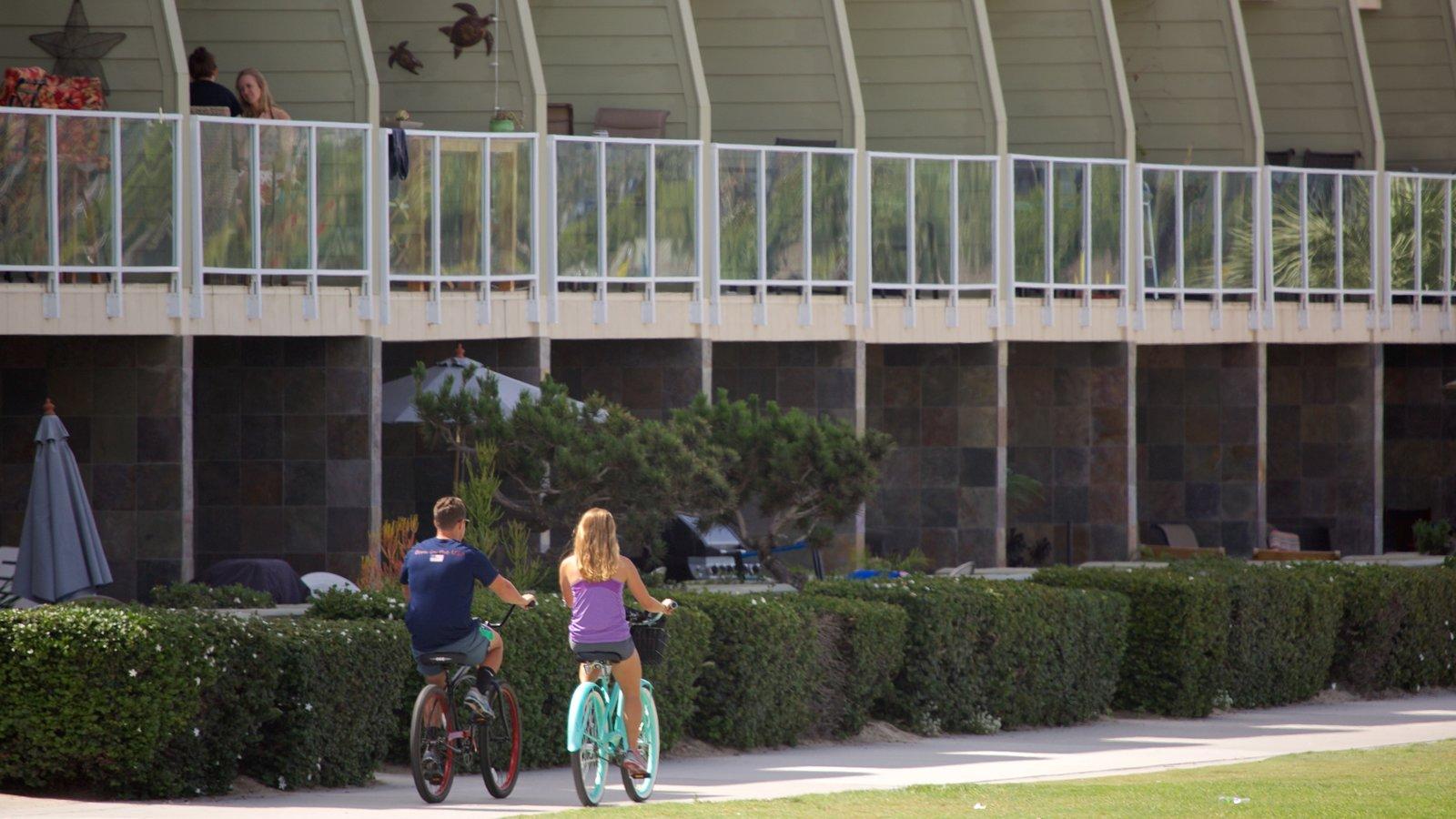 Mission Bay mostrando ciclismo e um jardim