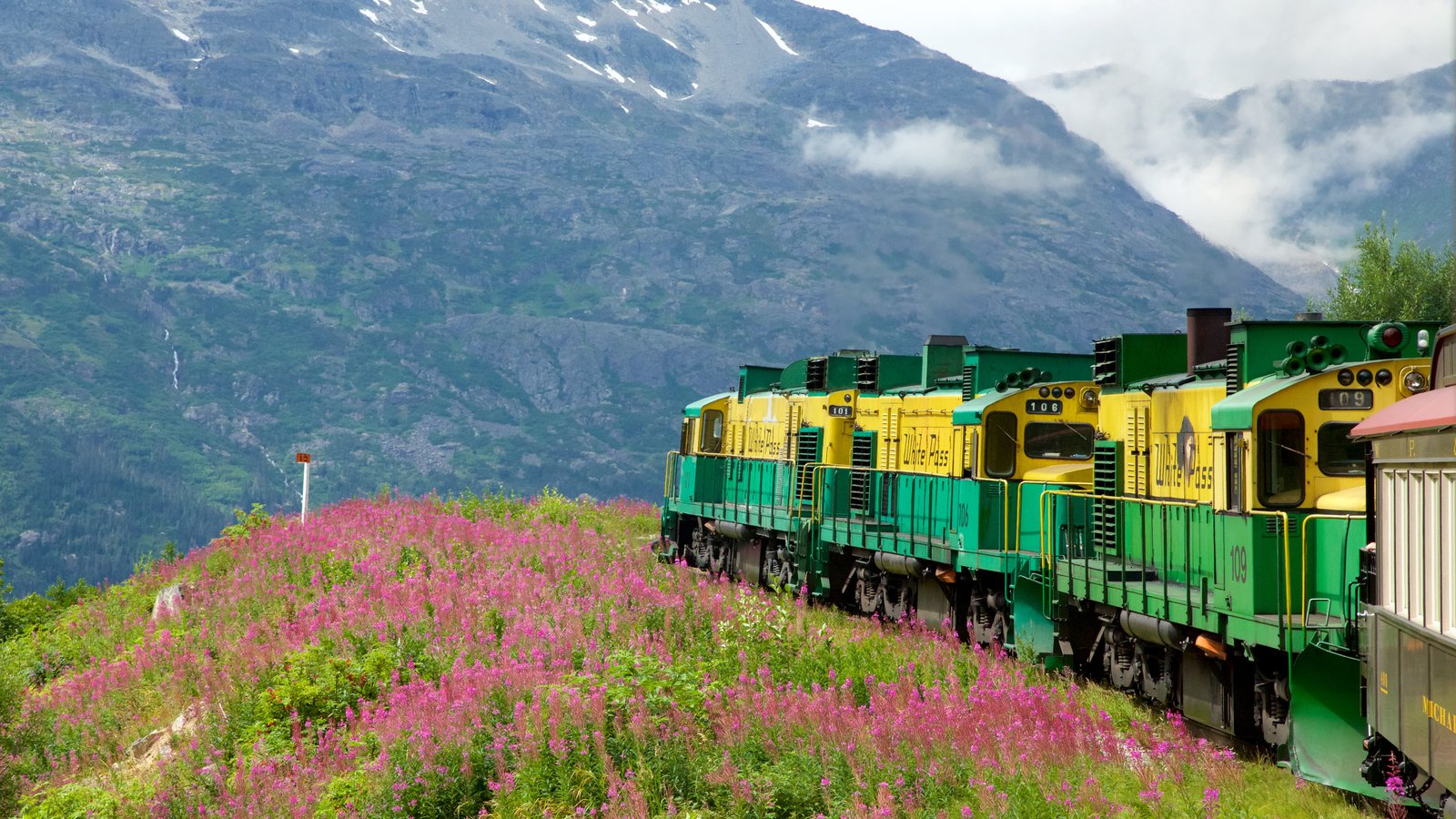 White Pass featuring mountains, railway items and wild flowers