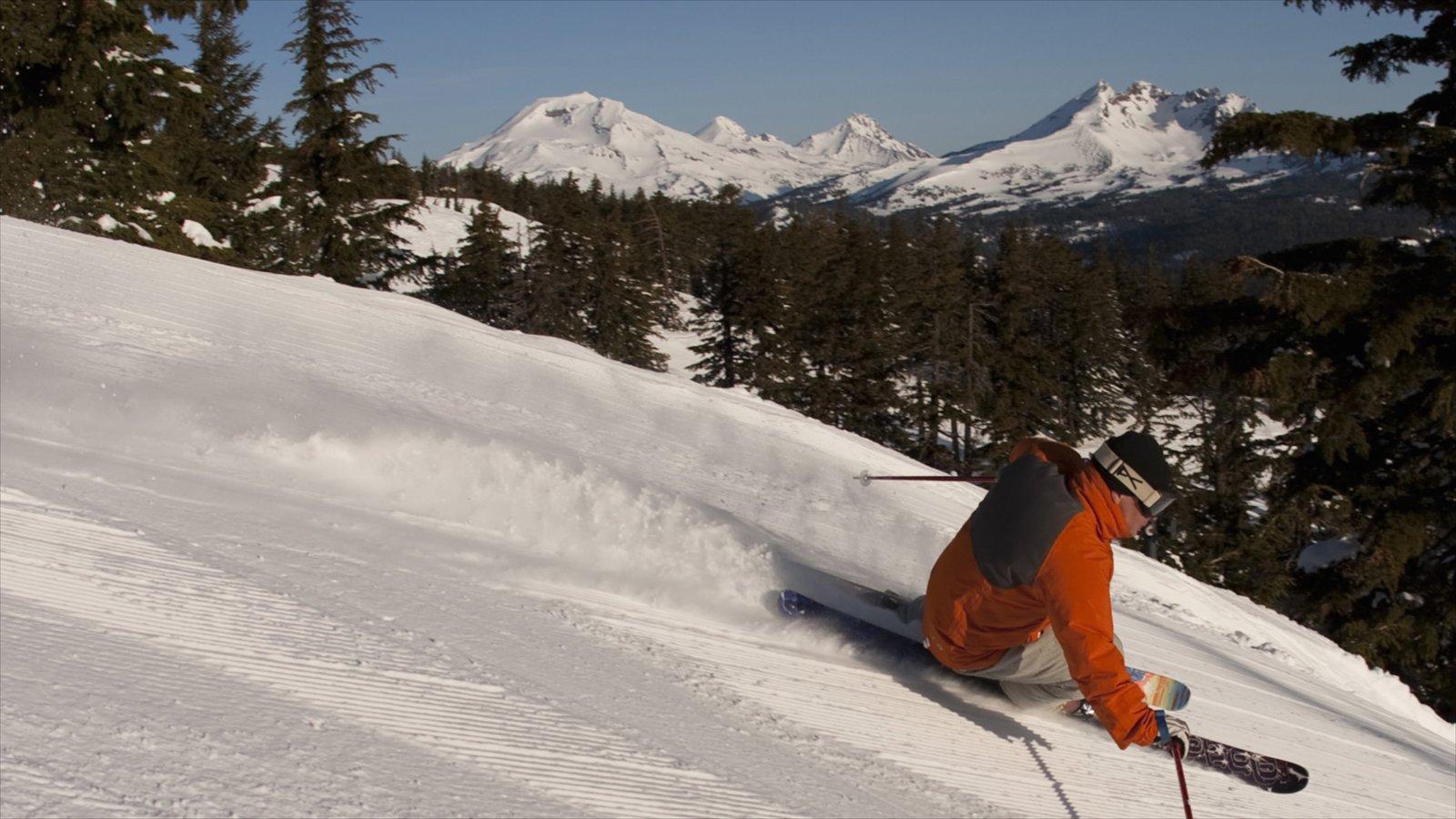 Mt Bachelor Ski Resort ofreciendo esquiar en la nieve y nieve