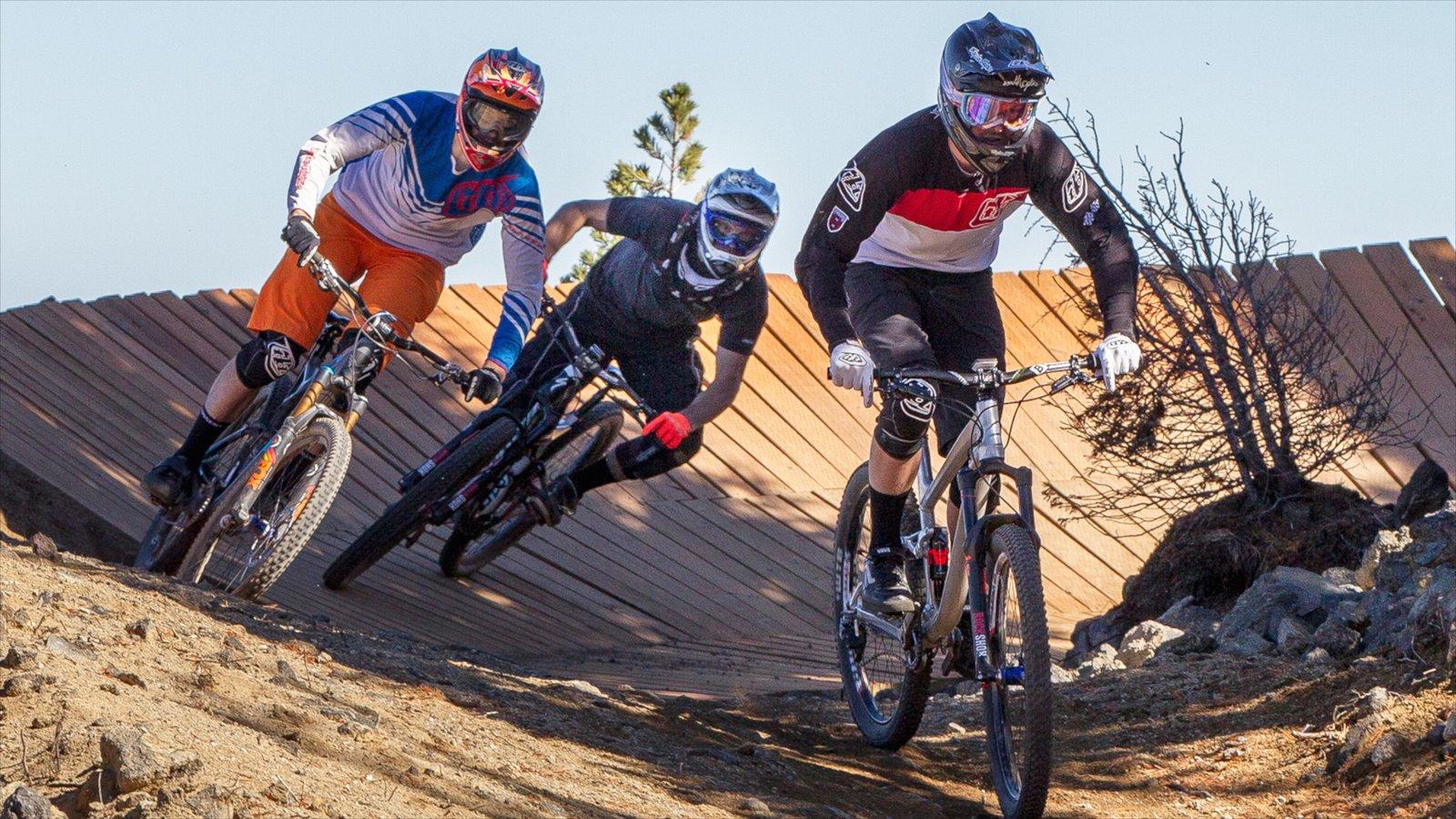 Mt Bachelor Ski Resort que incluye ciclismo de montaña y un evento deportivo