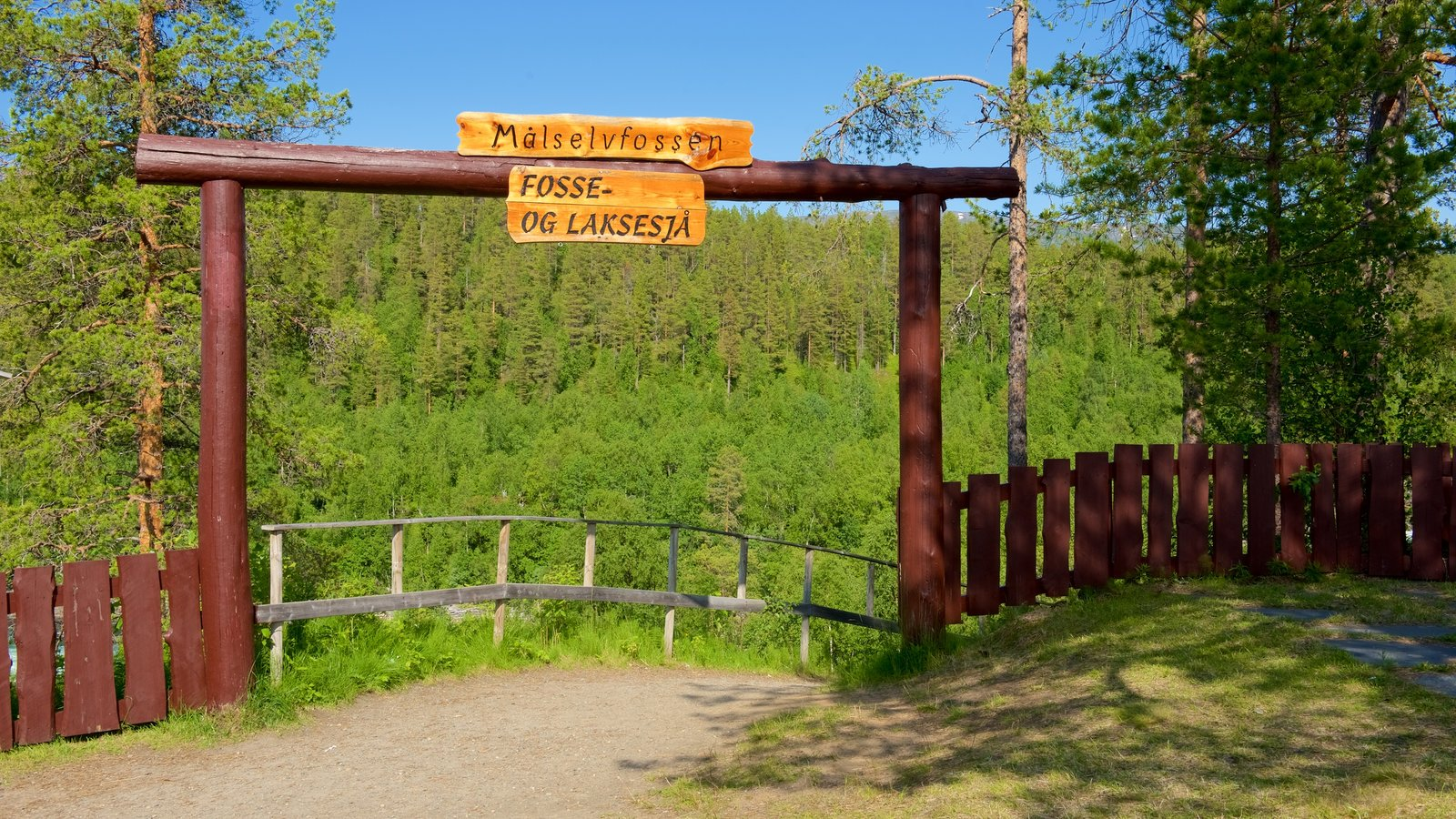 Maalselvfossen Waterfall which includes signage and forests