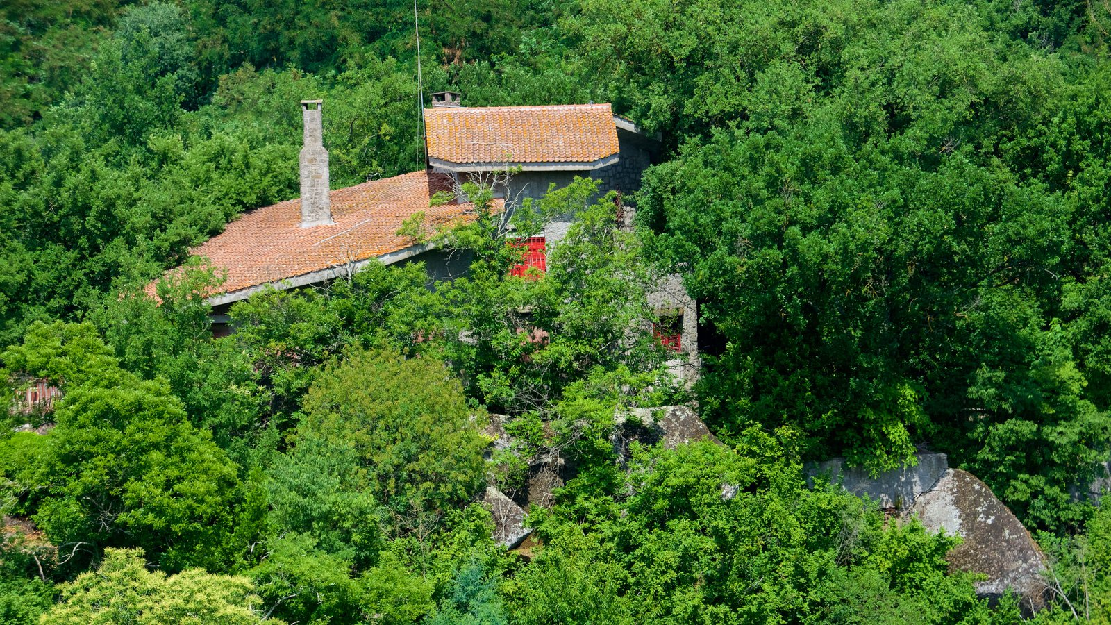 Vitorchiano which includes forests and a house