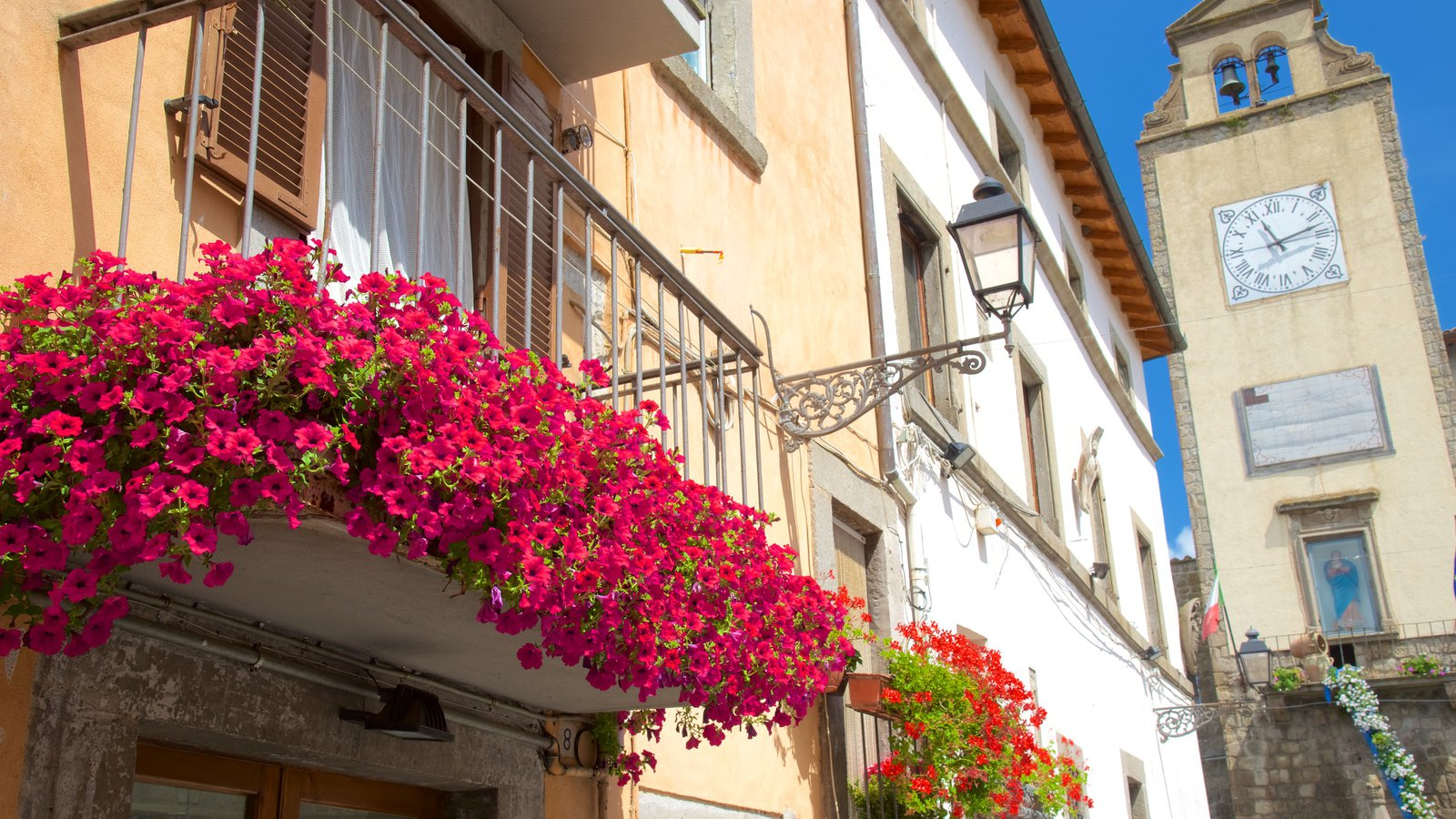 Vitorchiano showing flowers and heritage architecture