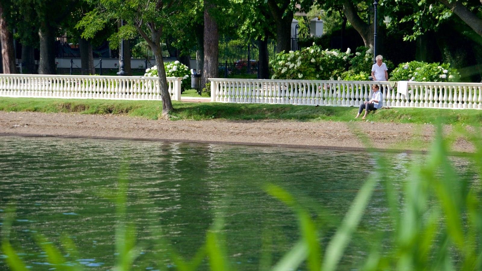 Lake Bolsena which includes a lake or waterhole