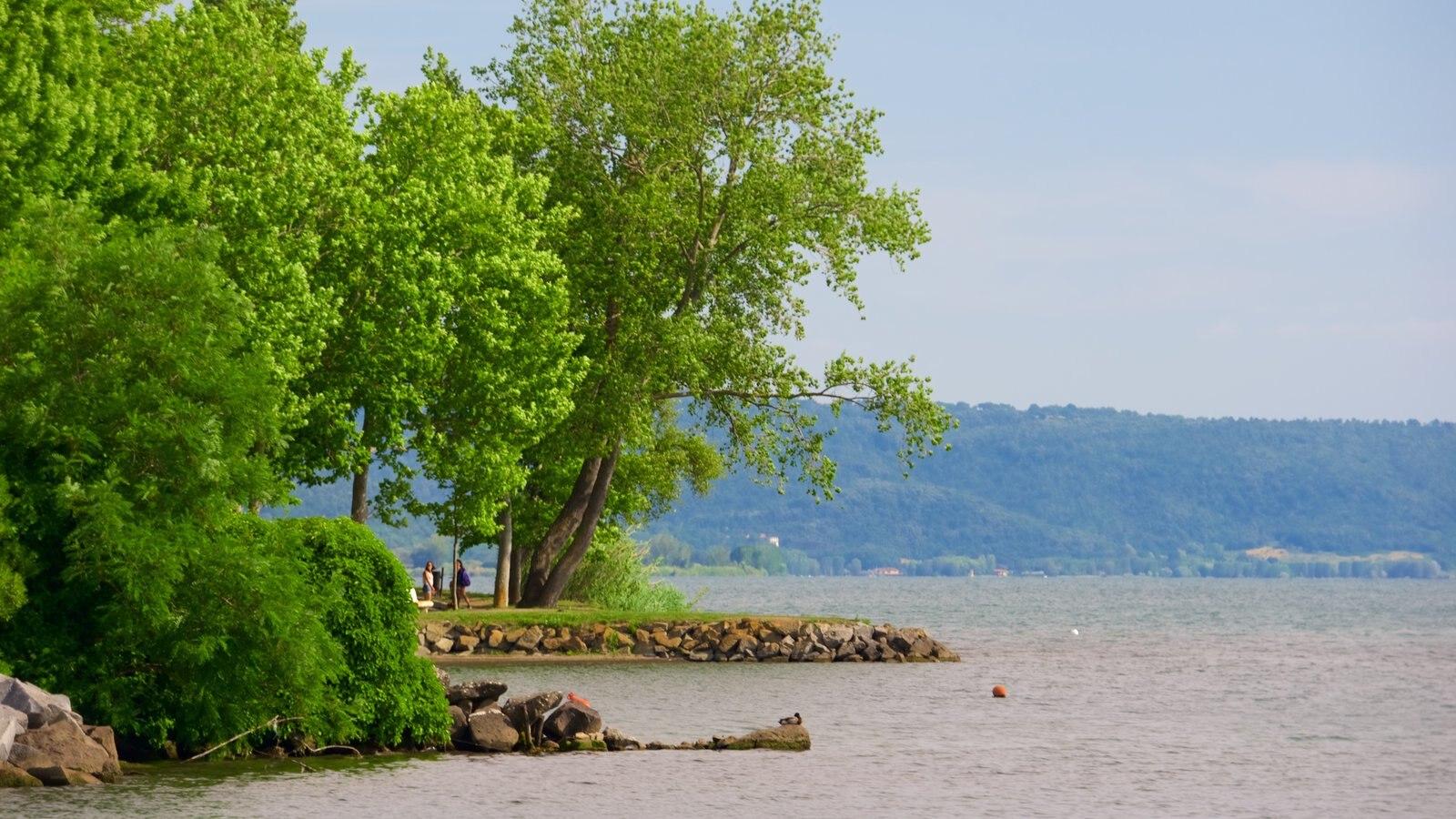 Lake Bolsena showing a lake or waterhole