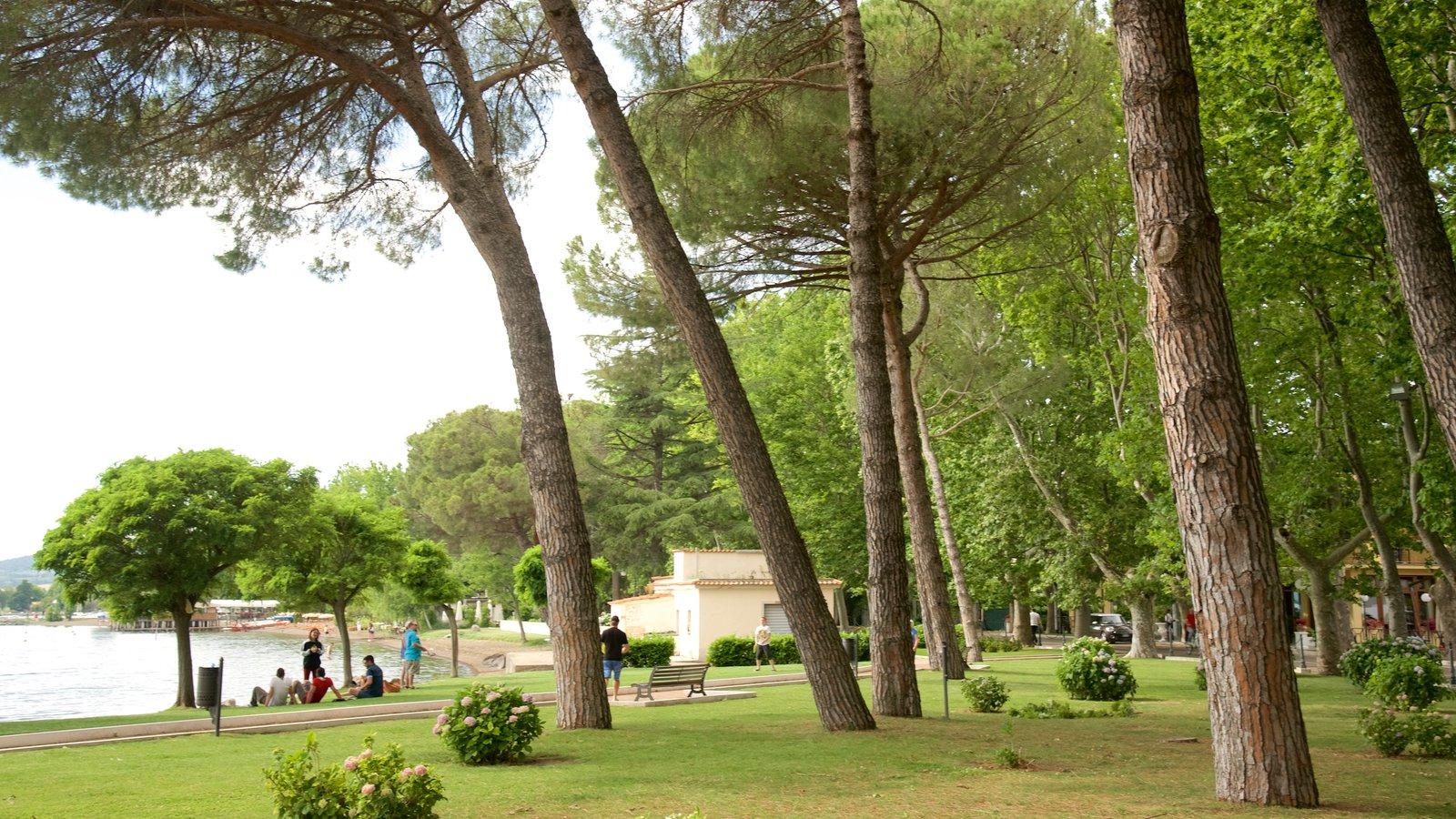 Lake Bolsena which includes a garden