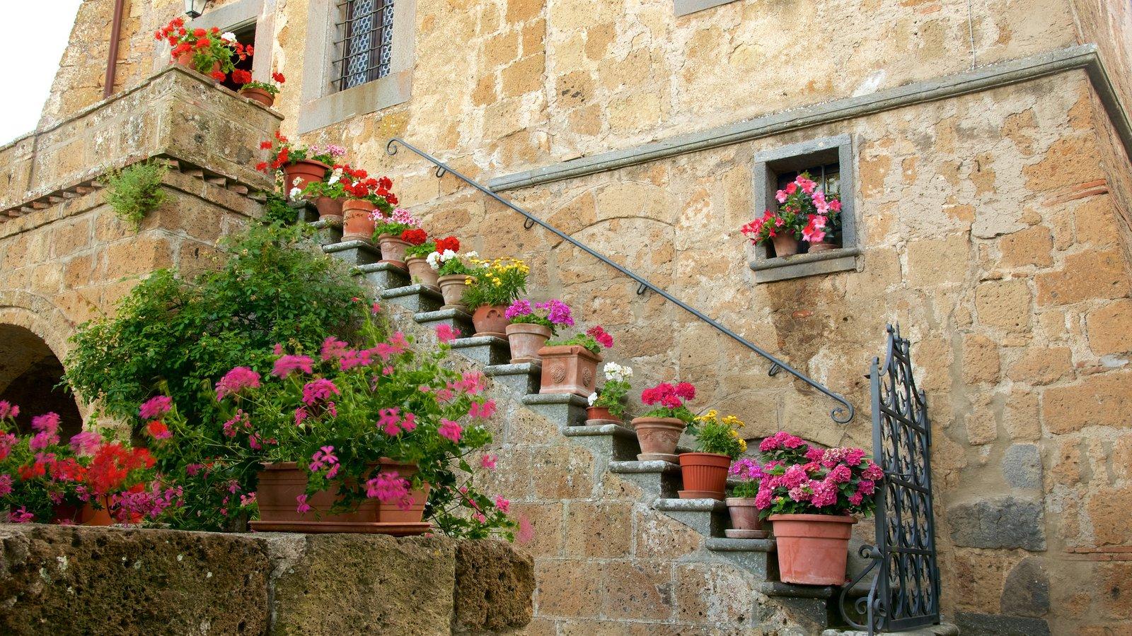 Bagnoregio que inclui arquitetura de patrimônio e flores