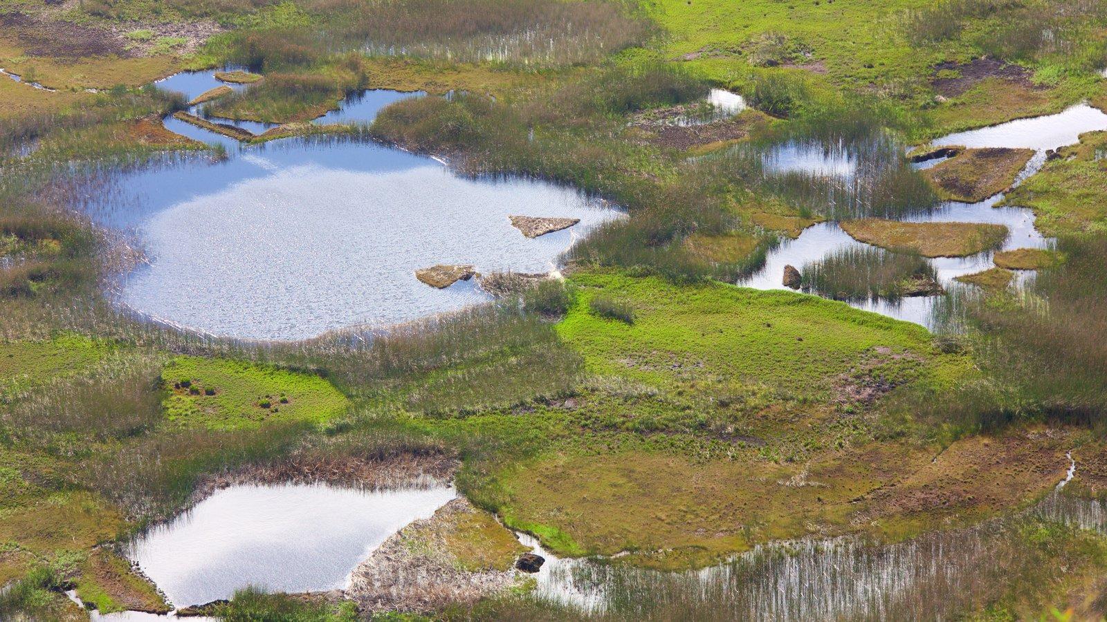 Isla de Pascua ofreciendo un estanque