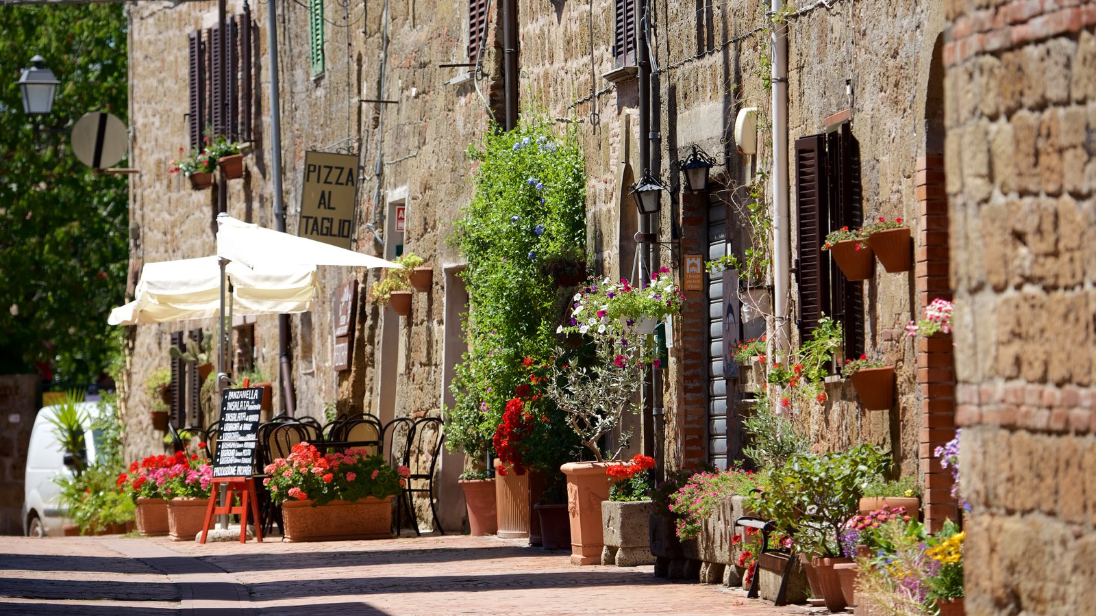 Sovana which includes flowers and heritage architecture