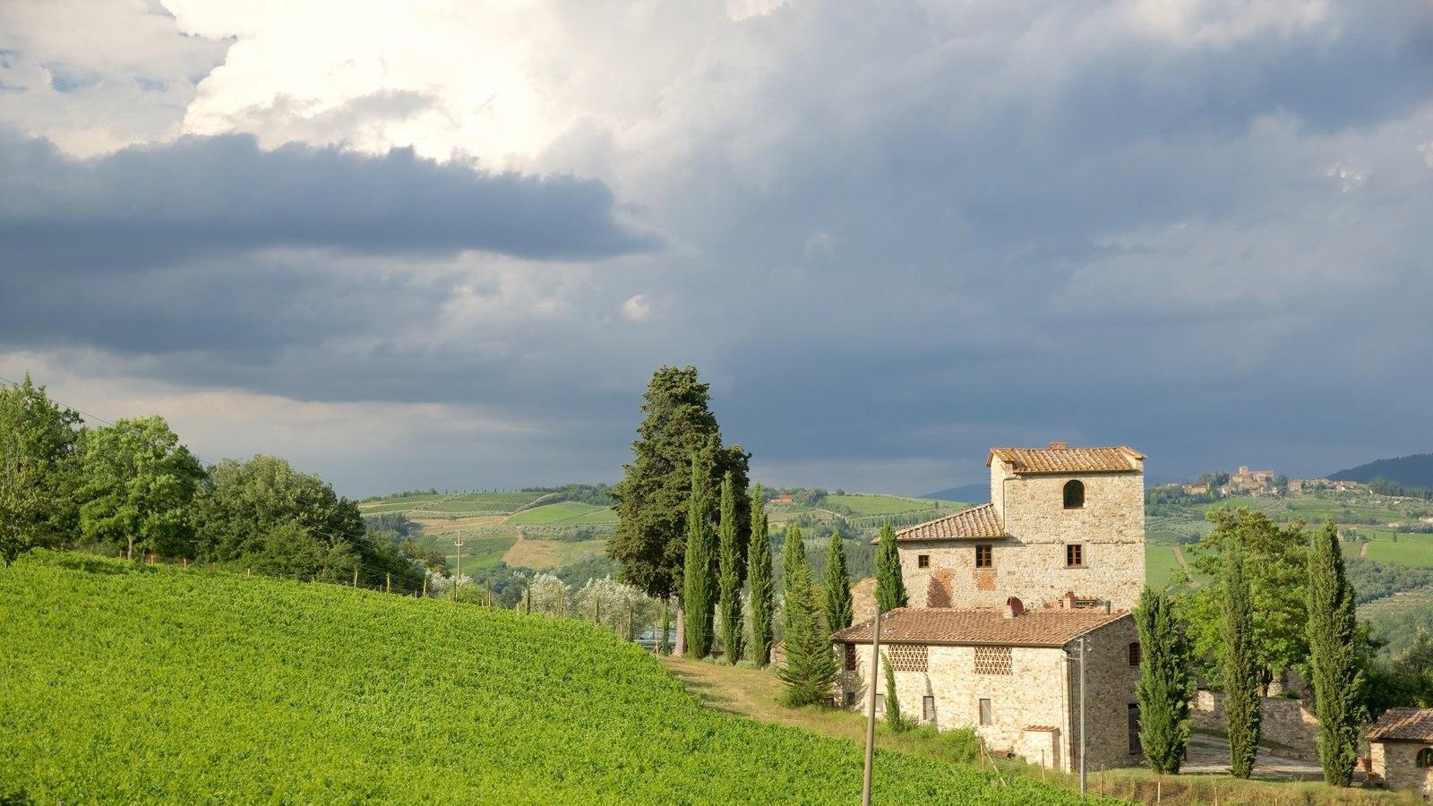 Castellina in Chianti which includes farmland