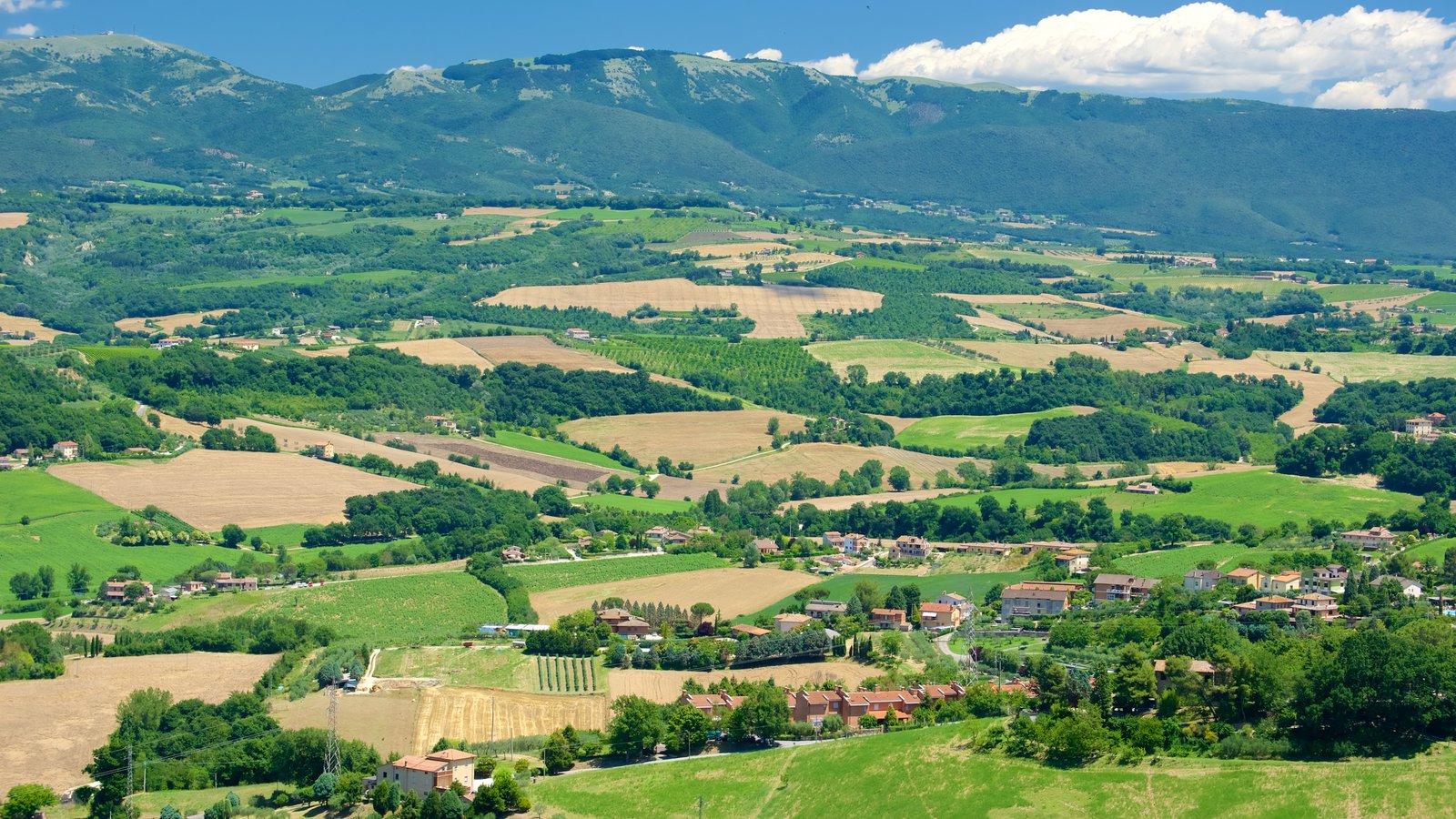 Todi que incluye vistas de paisajes