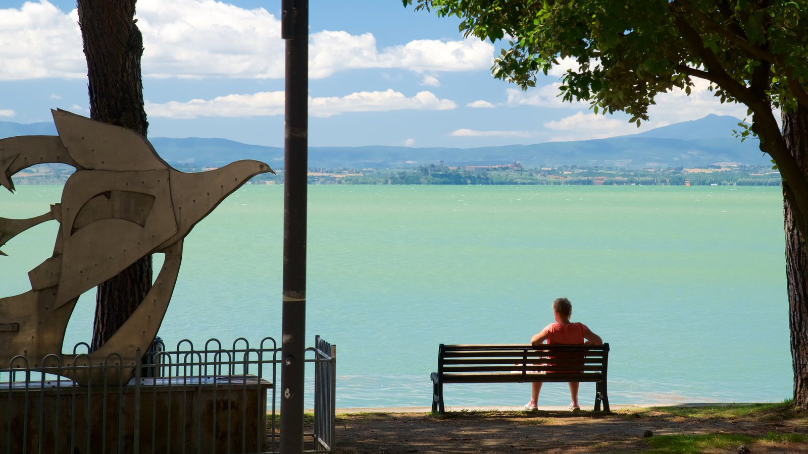 Passignano sul Trasimeno featuring a river or creek and outdoor art as well as an individual male