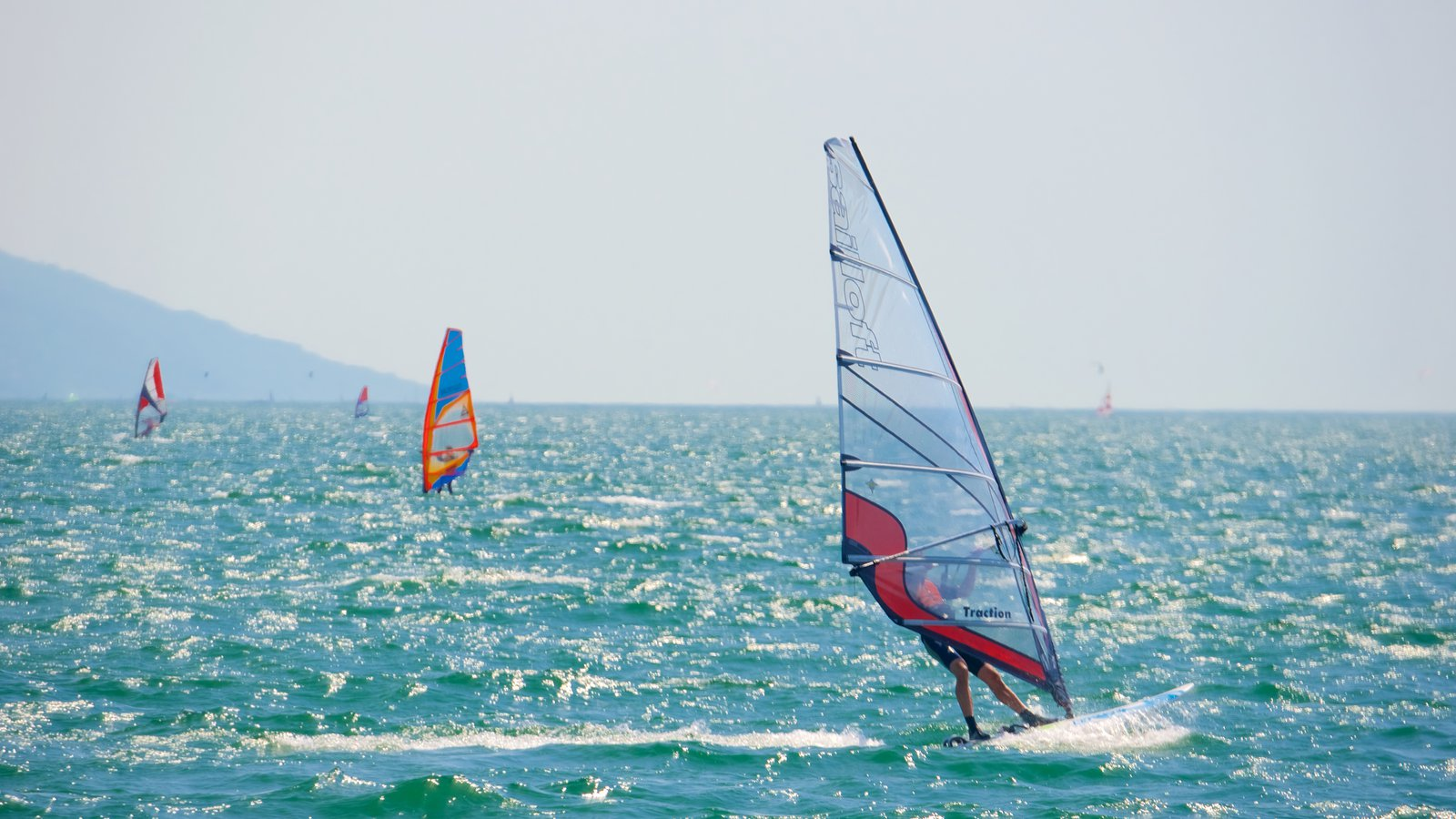 Nago-Torbole showing general coastal views and windsurfing