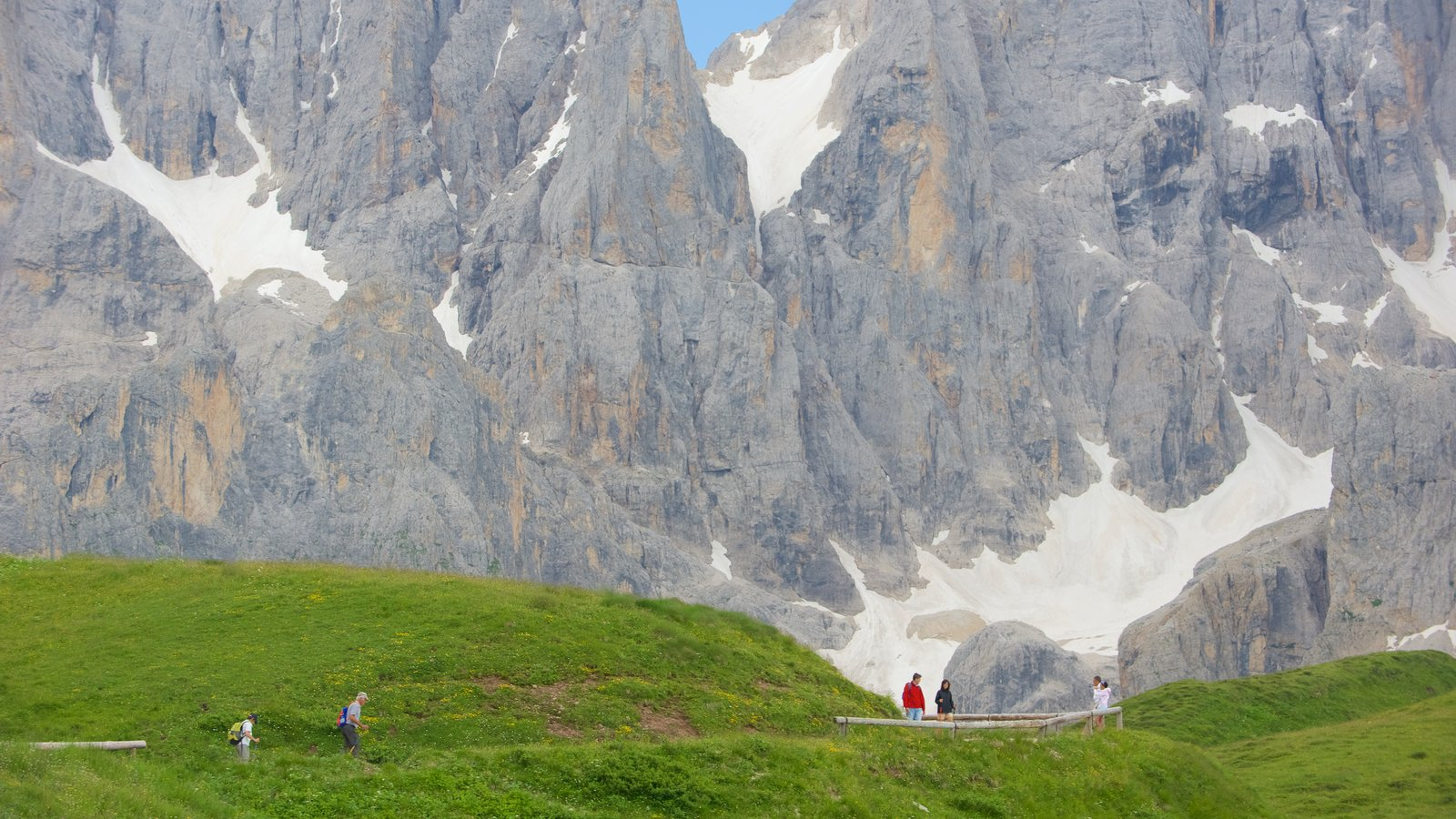 Passo Rolle mostrando senderismo o caminata y escenas tranquilas