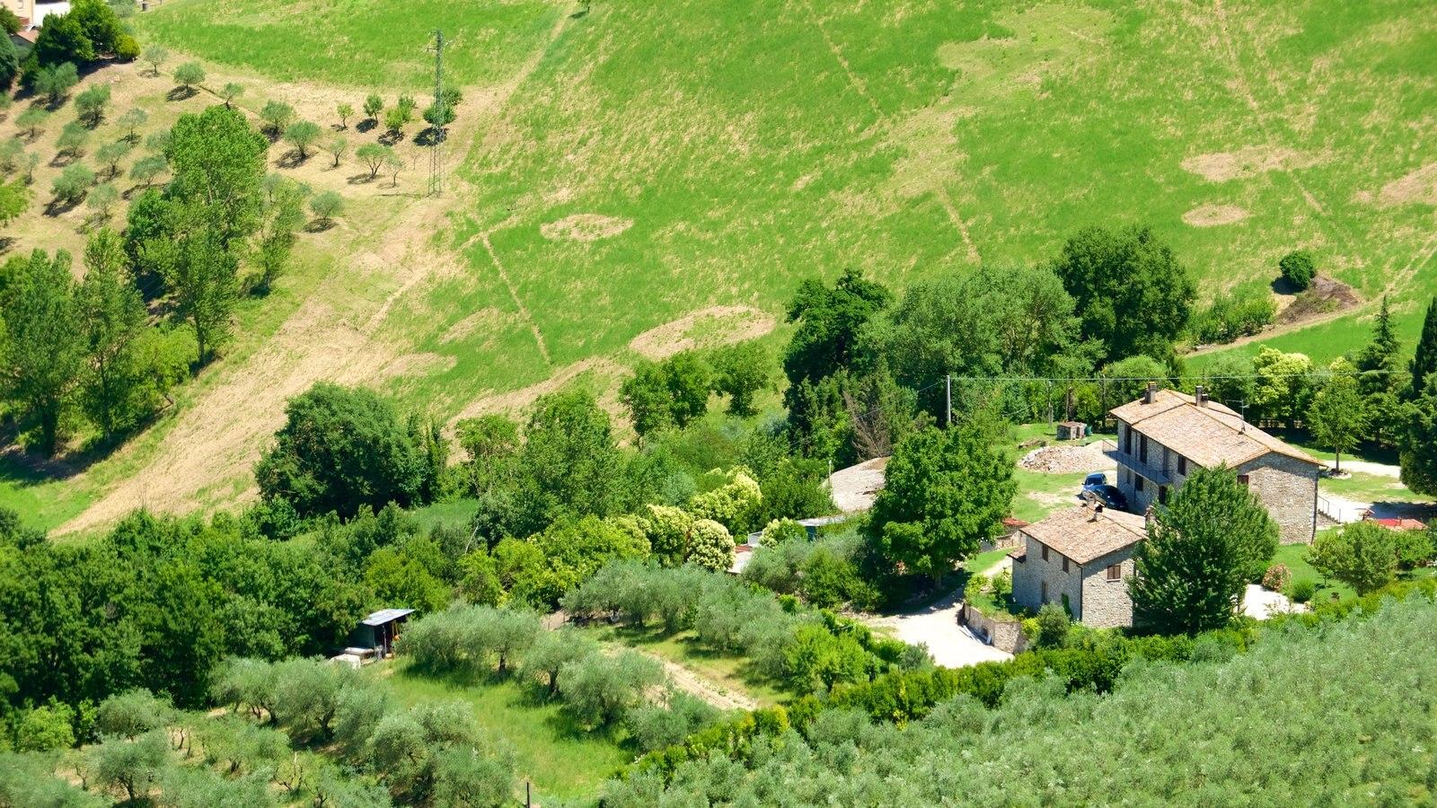 Todi que incluye tierras de cultivo, una casa y vistas de paisajes