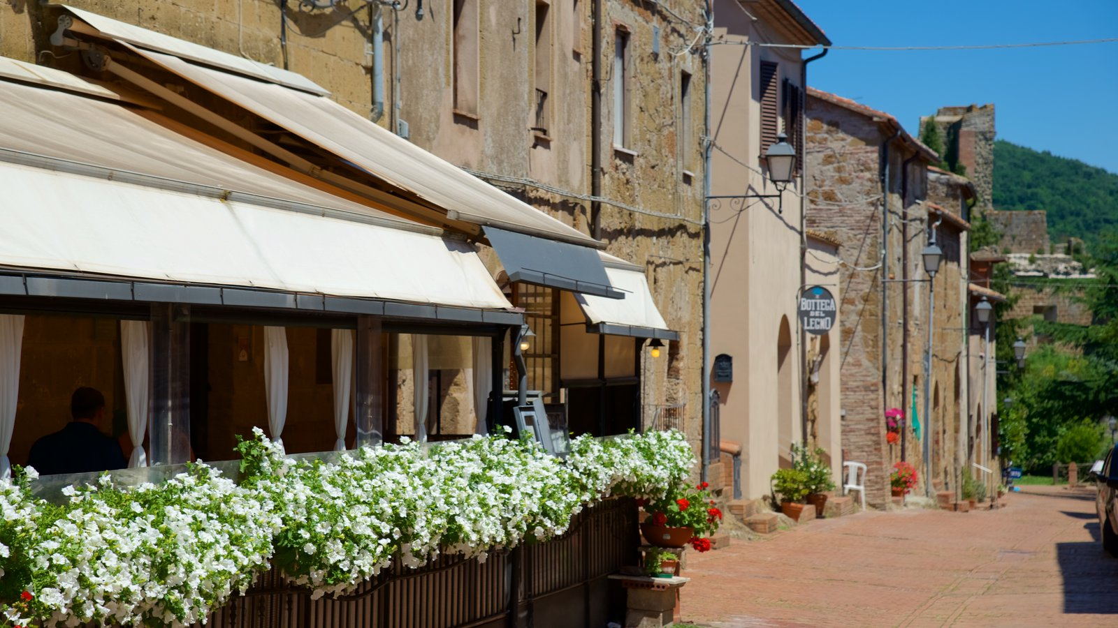 Sovana featuring a small town or village and flowers