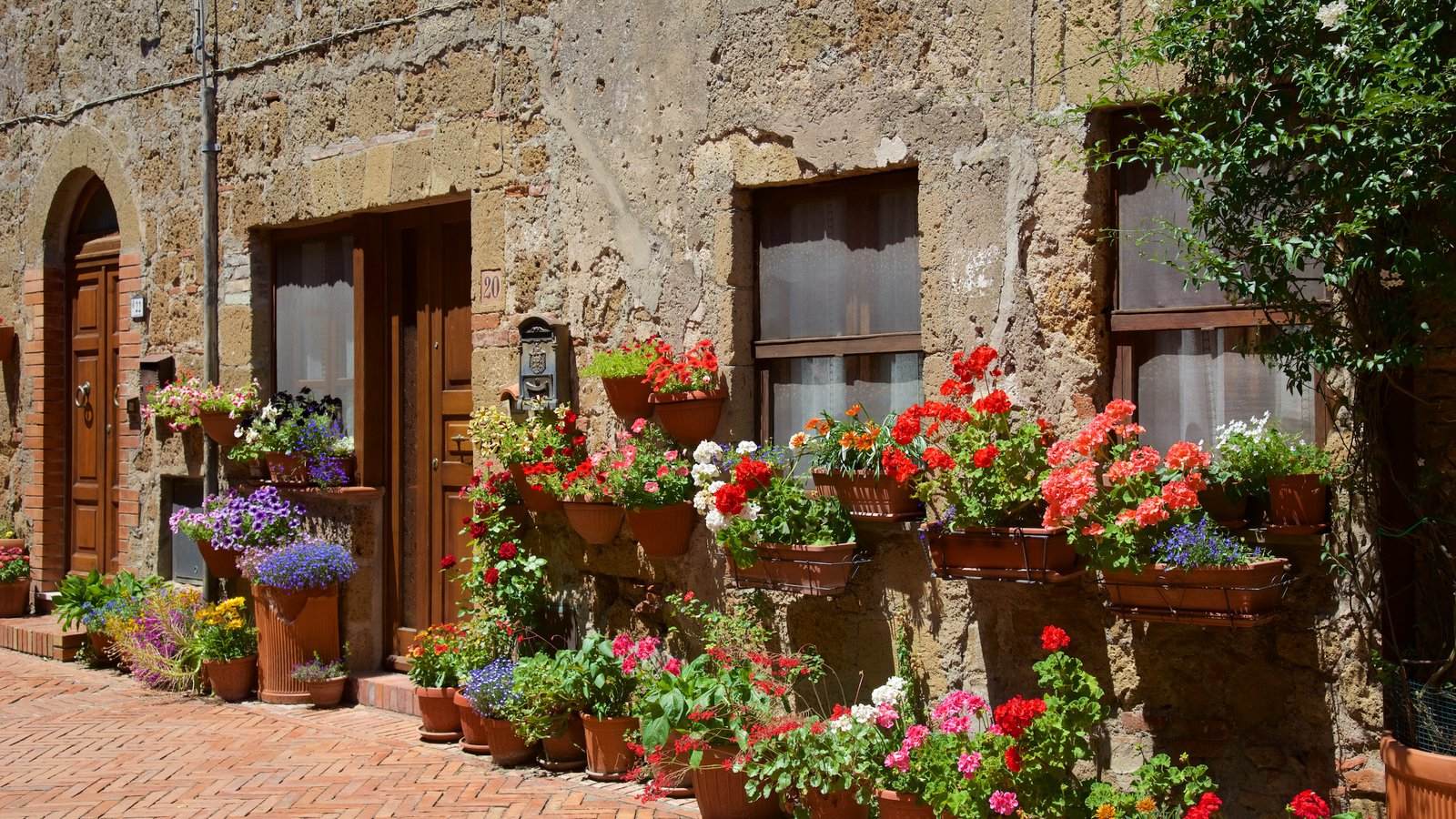 Sovana which includes flowers