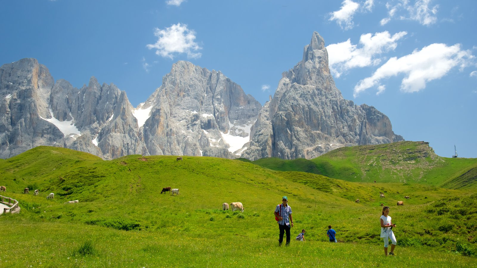 Passo Rolle which includes mountains and land animals as well as a small group of people