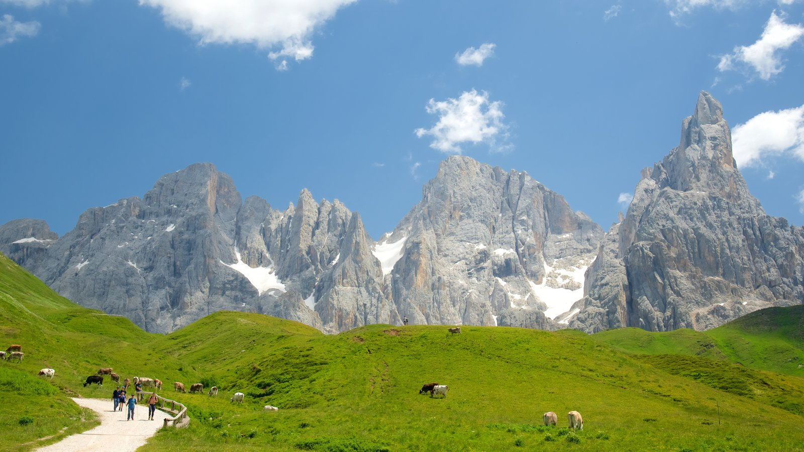 Passo Rolle which includes land animals, mountains and farmland