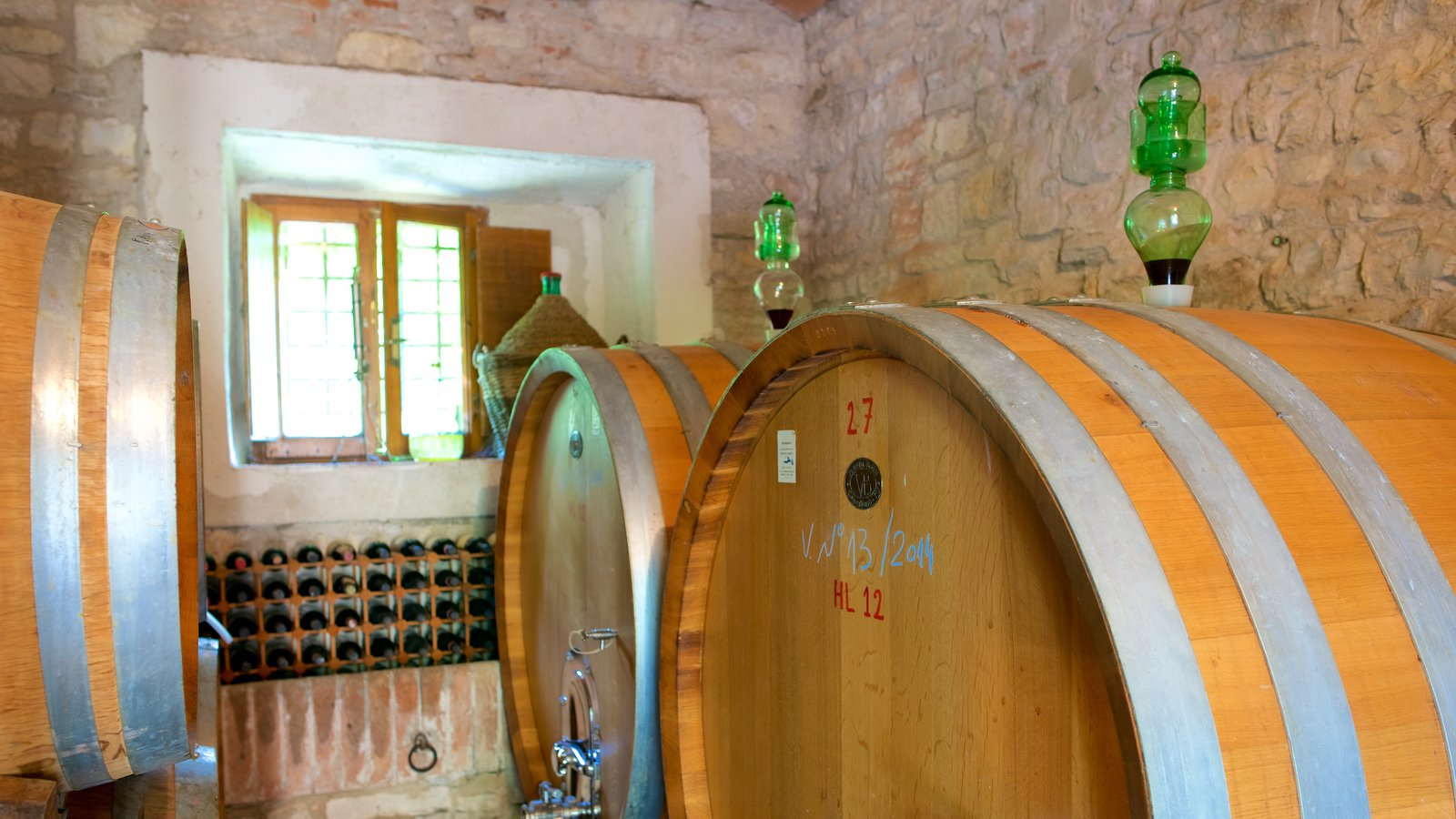 Castellina in Chianti featuring interior views