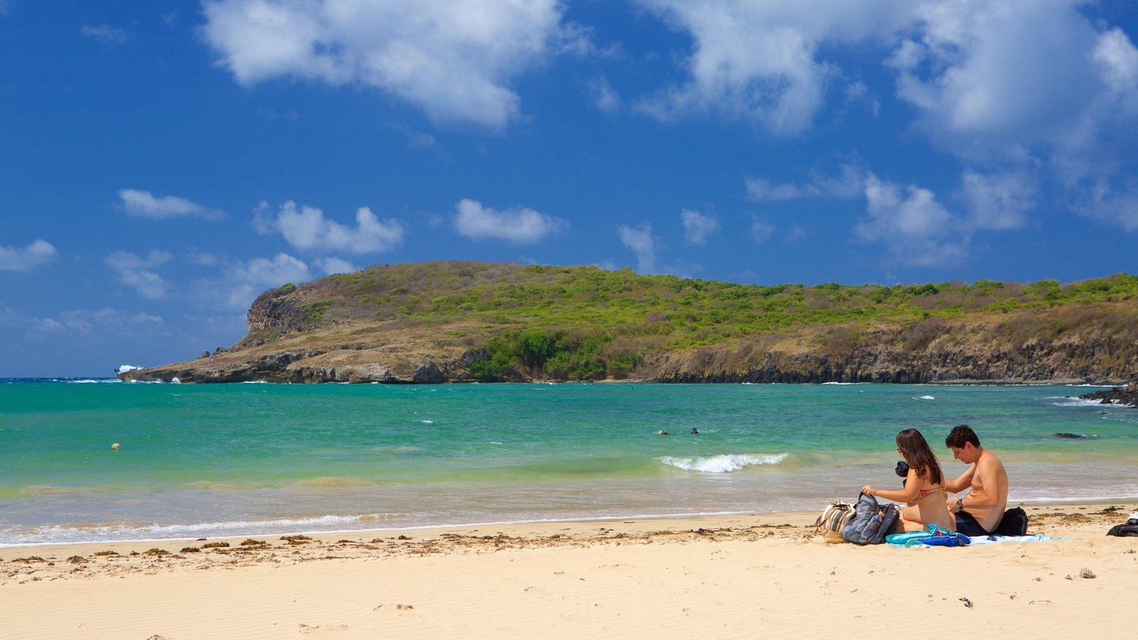 Praia do Sueste caracterizando uma praia e paisagens litorâneas assim como um casal