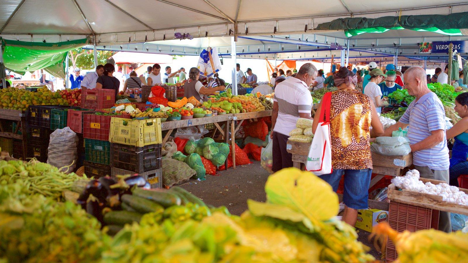 Natal mostrando mercados e comida assim como um grande grupo de pessoas