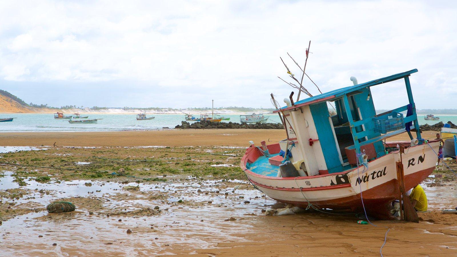 Baía Formosa caracterizando canoagem, uma praia e paisagens litorâneas
