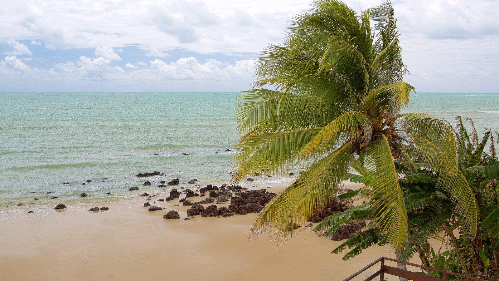 Praia de Pirangi que inclui uma praia, cenas tropicais e paisagens litorâneas