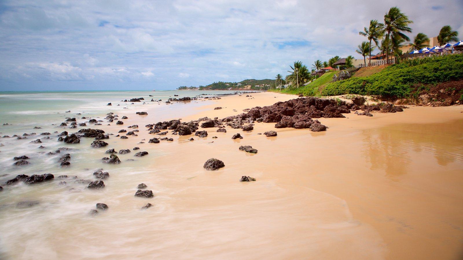 Praia de Pirangi que inclui cenas tropicais, uma praia de areia e paisagens litorâneas
