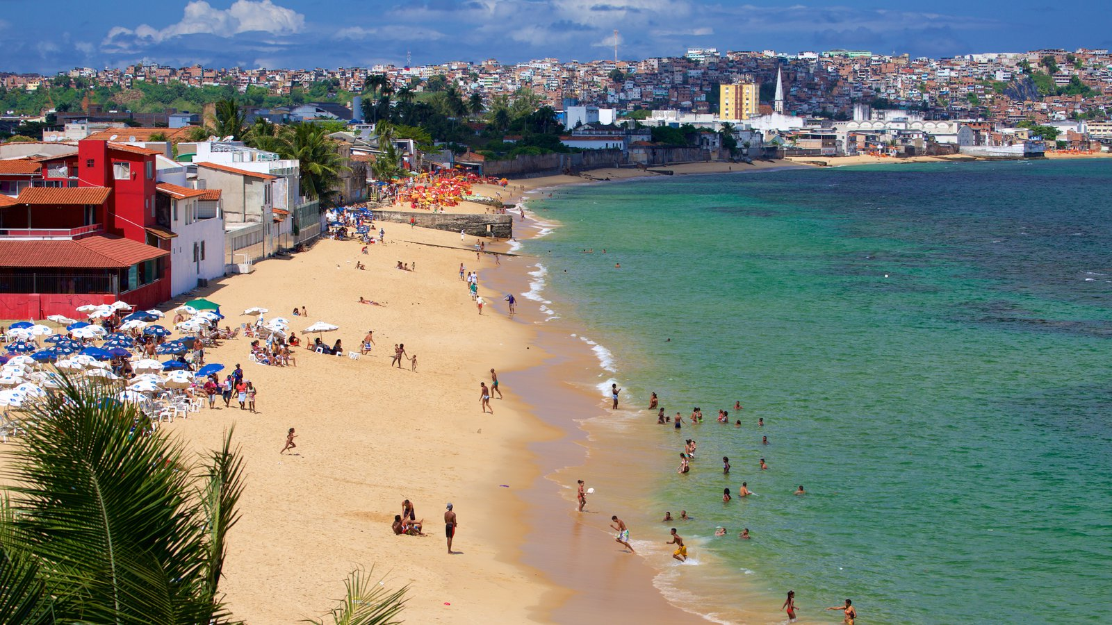Salvador mostrando natação, uma cidade litorânea e uma praia de areia