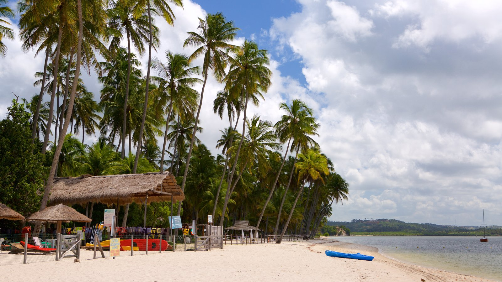 Tamandaré caracterizando uma praia, cenas tropicais e paisagens litorâneas