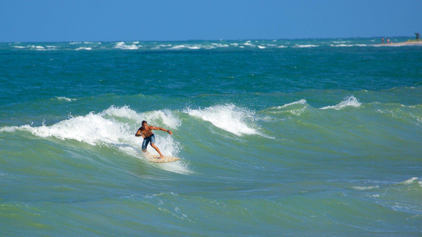 Praia de Maracaípe que inclui paisagens litorâneas, surfe e ondas
