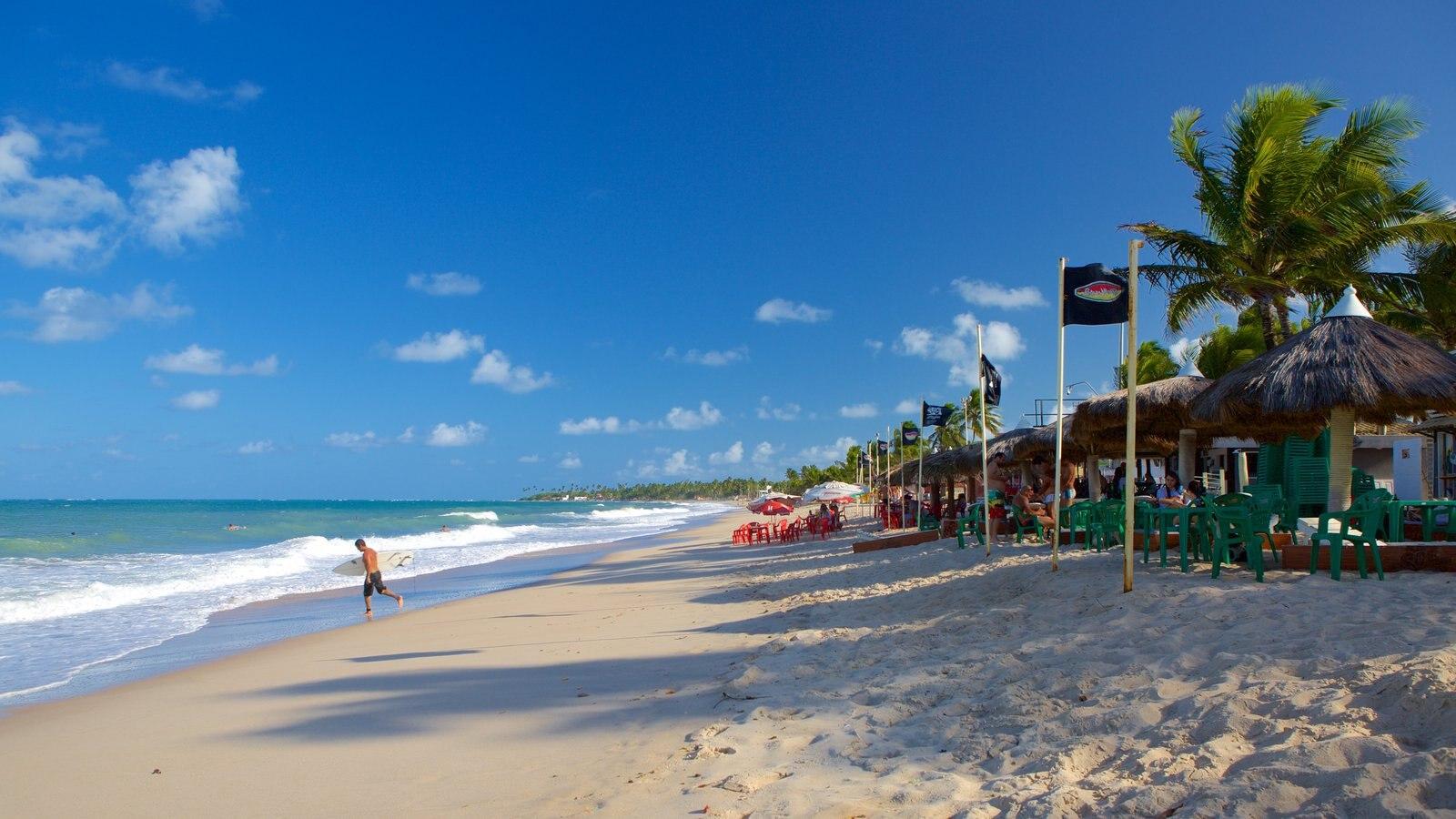 Praia de Maracaípe que inclui paisagens litorâneas e uma praia de areia