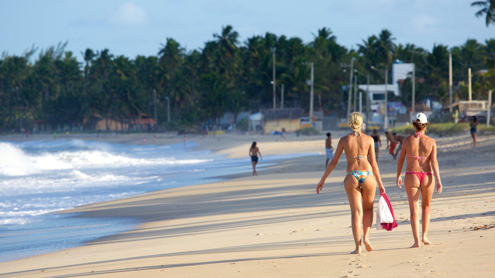 Praia de Maracaípe que inclui paisagens litorâneas, uma praia e cenas tropicais