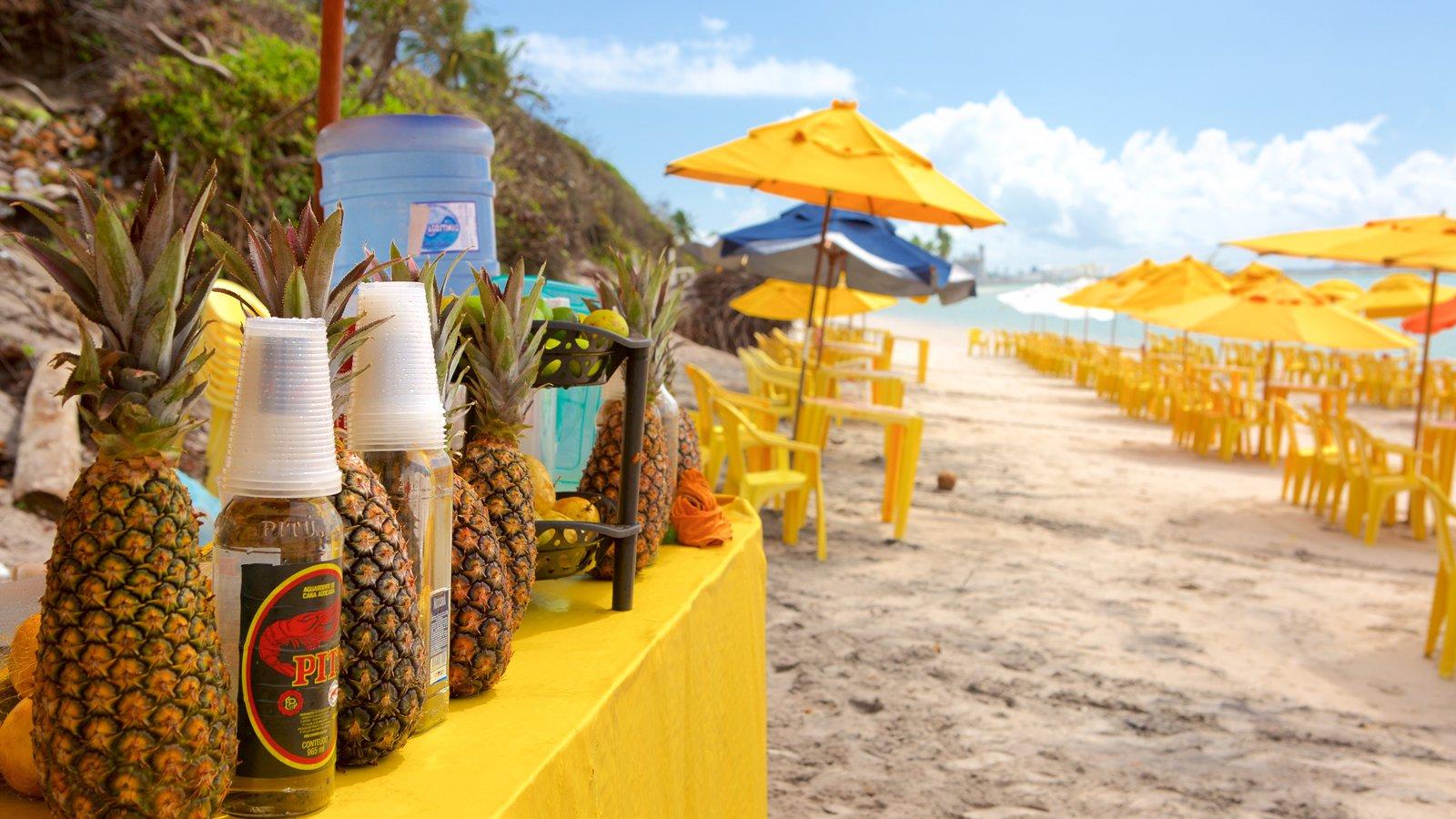 Ipojuca caracterizando paisagens litorâneas, cenas tropicais e bebidas