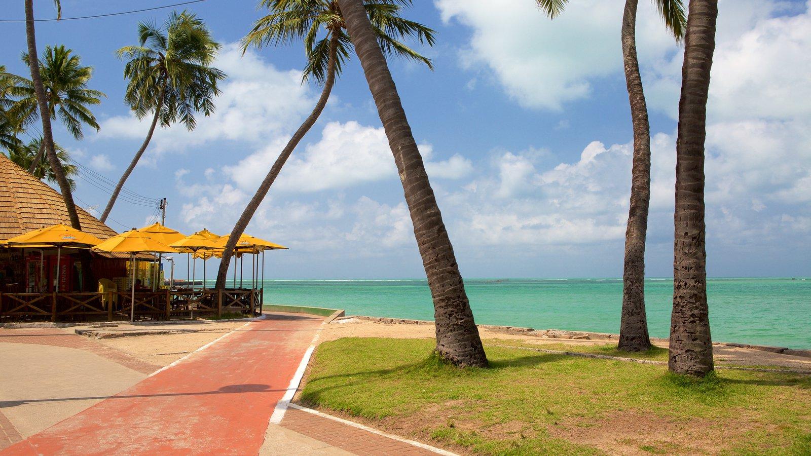 Praia de Ponta Verde caracterizando paisagens litorâneas e uma cidade litorânea