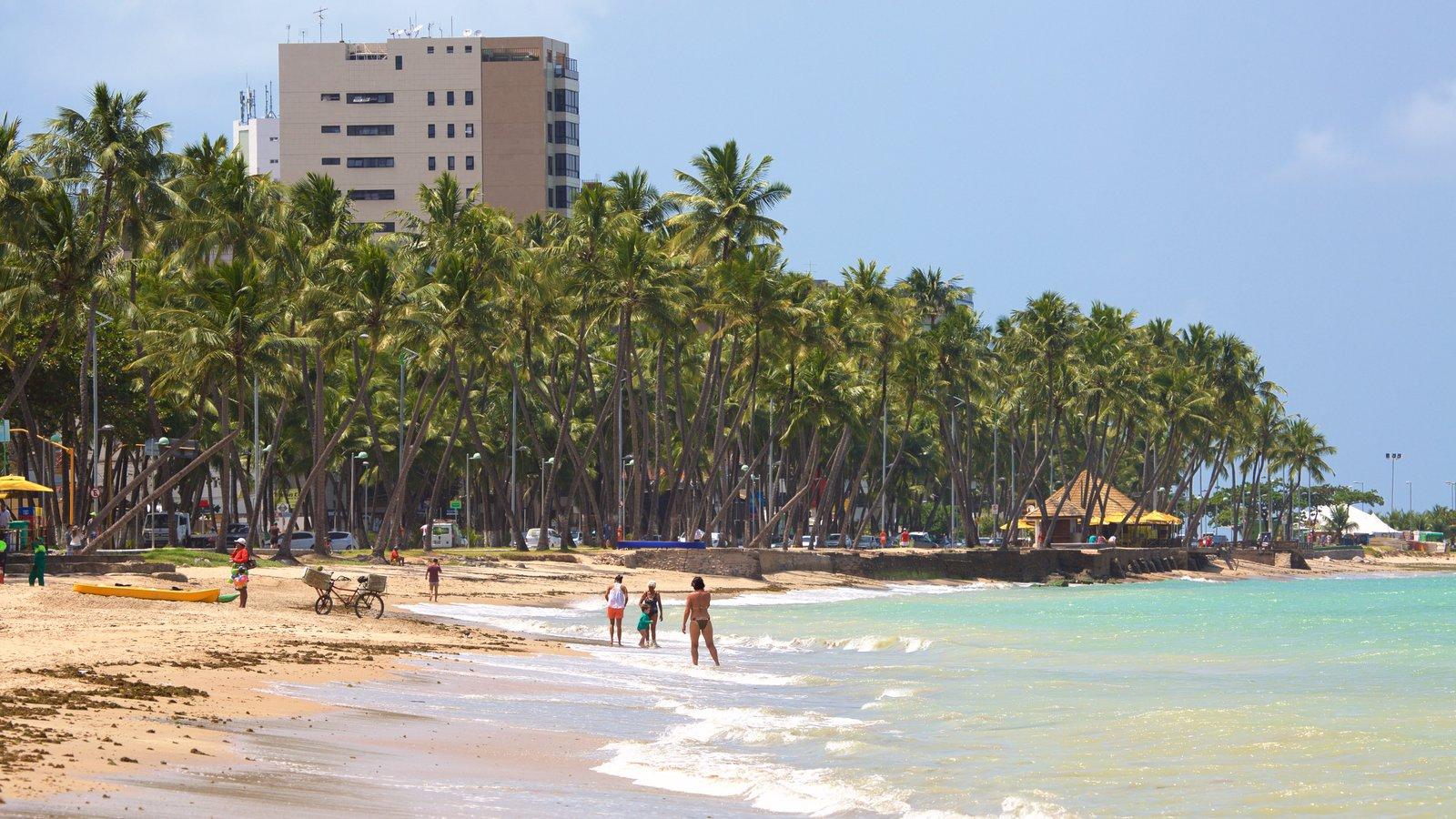 Praia de Pajuçara mostrando paisagens litorâneas, uma praia de areia e uma cidade litorânea