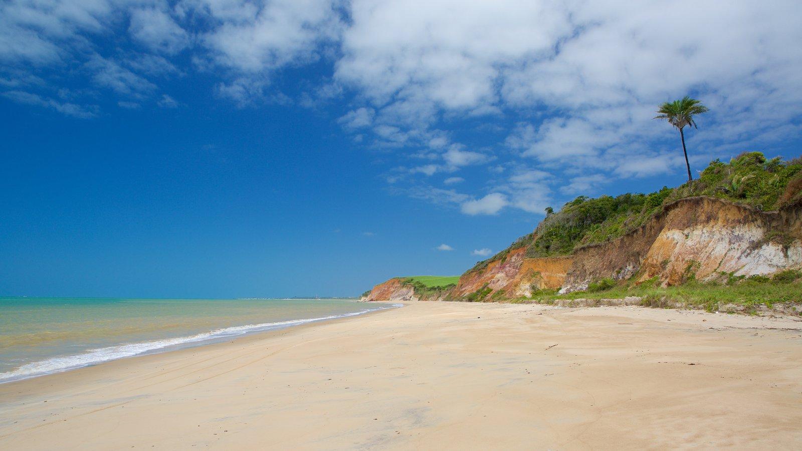 Maceió que inclui uma praia de areia, litoral acidentado e paisagens litorâneas