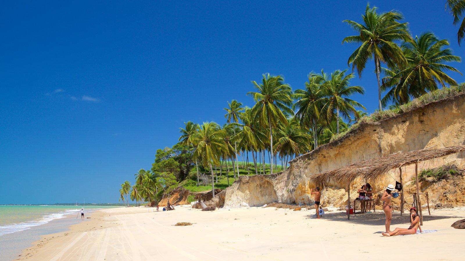 Maceió caracterizando cenas tropicais, uma praia de areia e paisagens litorâneas