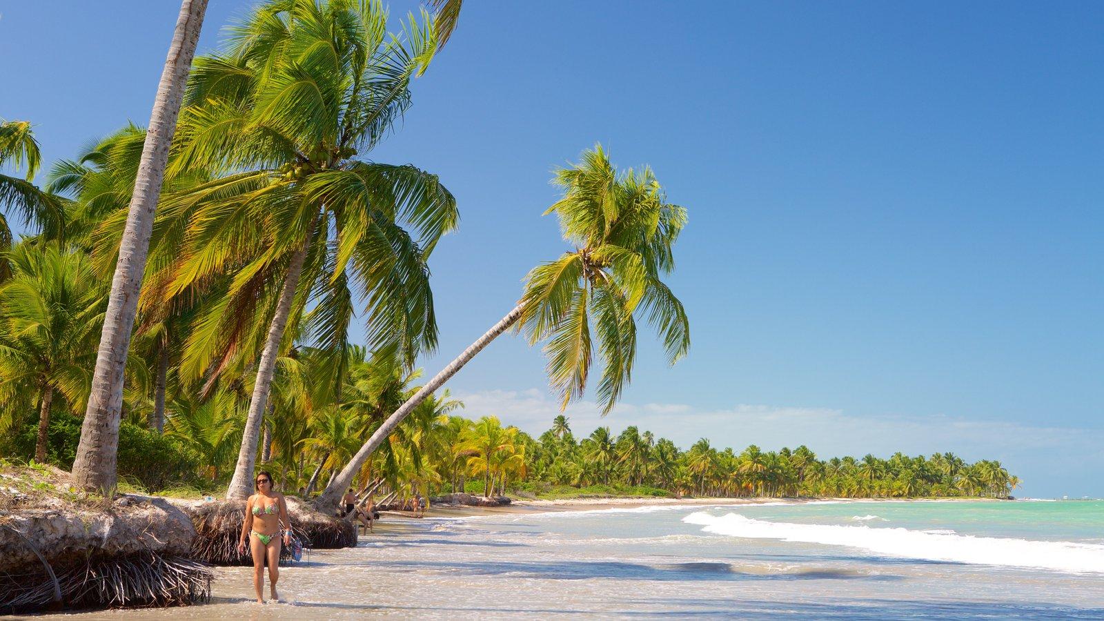 Praia de Ipioca caracterizando cenas tropicais, paisagens litorâneas e uma praia de areia